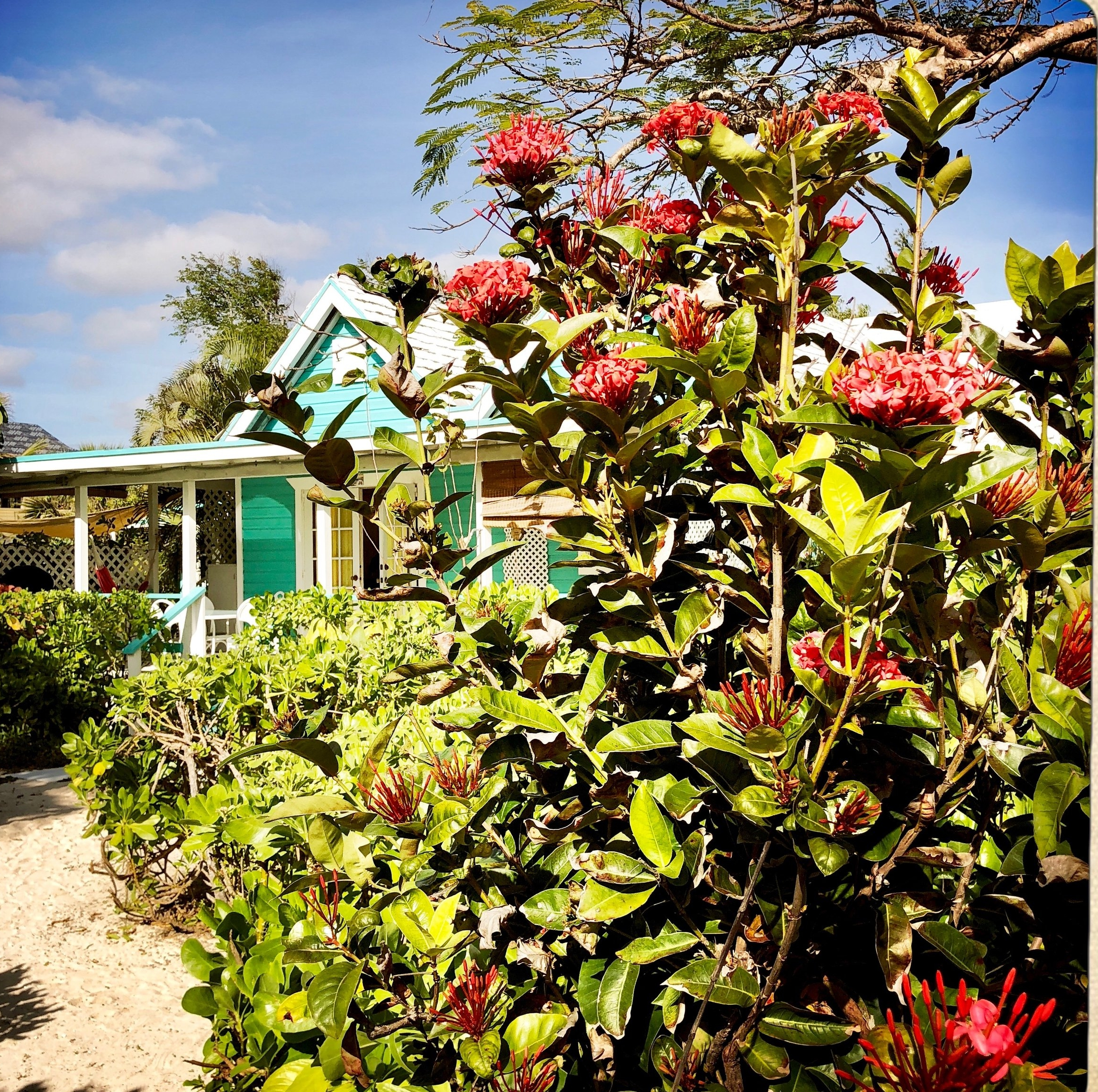 Open Air Places - Topaz Cottage Diamonds by the Sea Unique Vacation Rental Grand Bahama Island