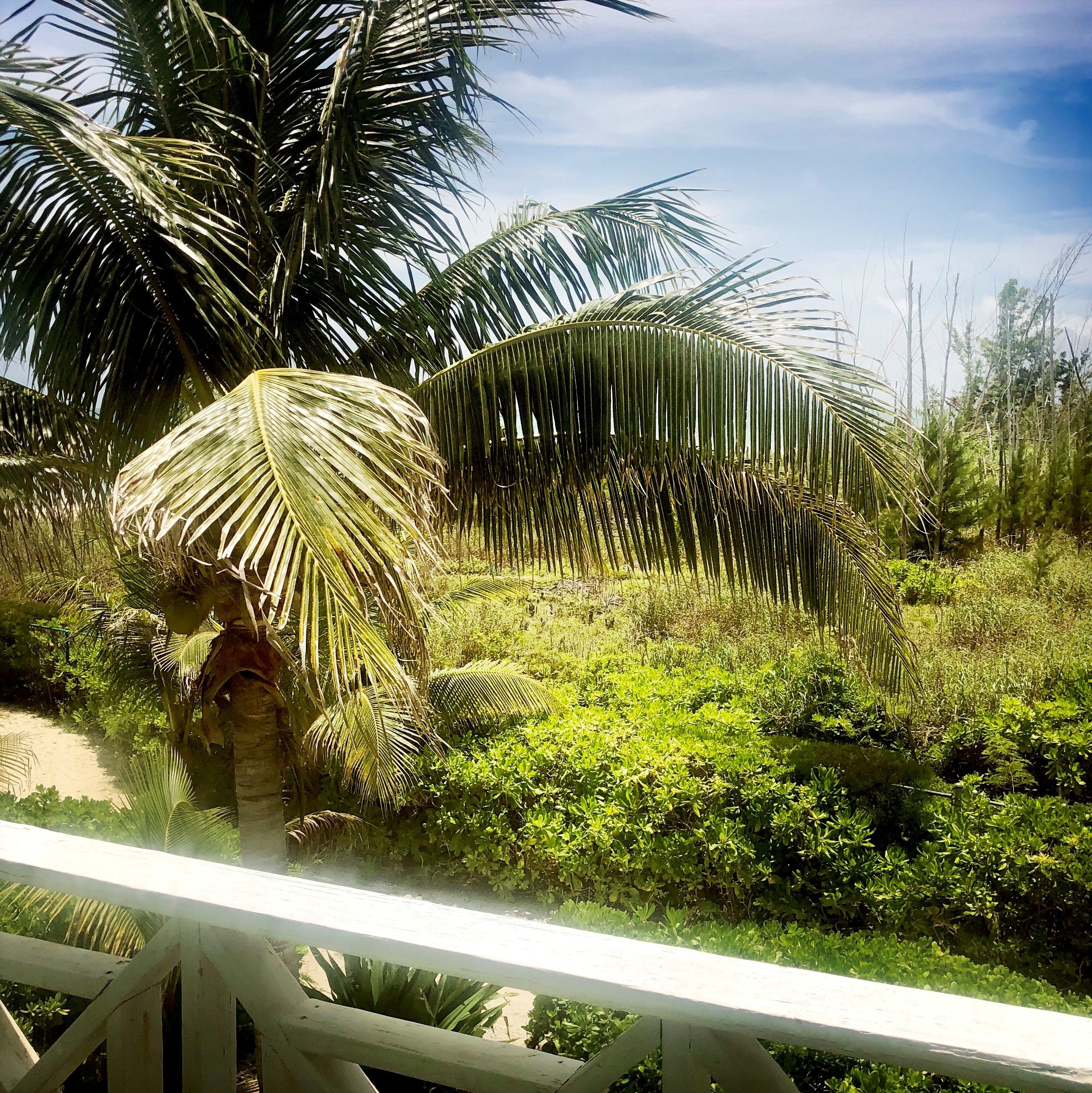 Open Air Places - Key Lime Cottage at Diamonds by the Sea 56.jpg