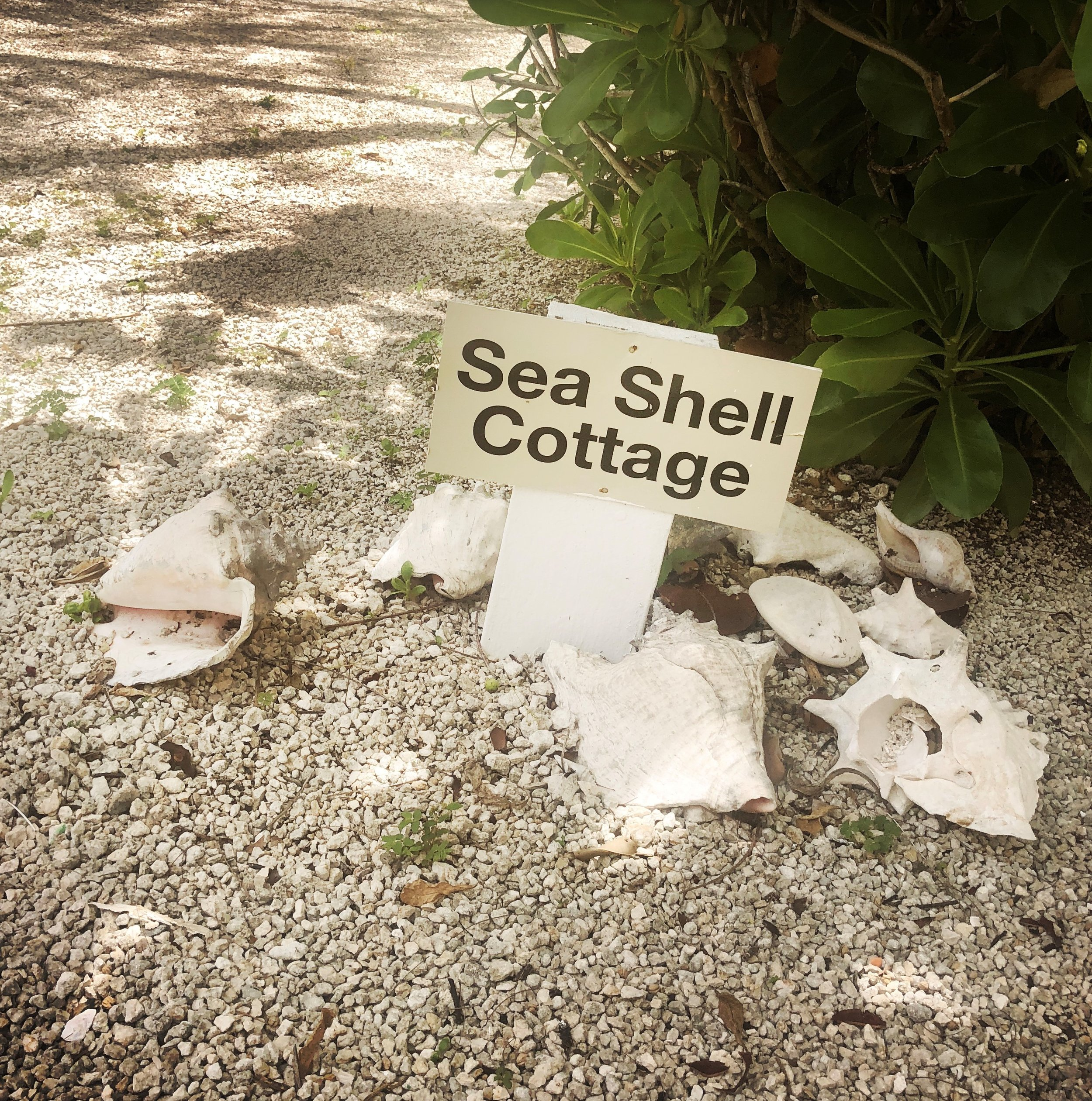 Open Air Places - Sea Shell Cottage at Diamonds by the Sea 18.jpg