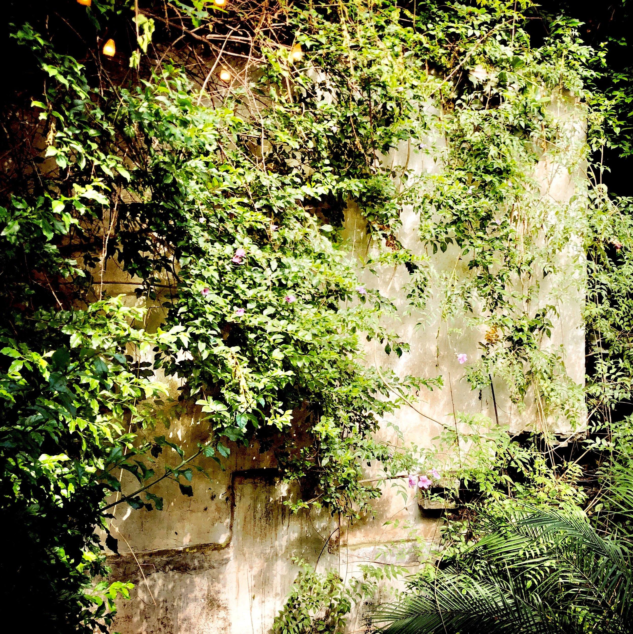 Open Air Places - Meson Panza Verde 5.4.JPG