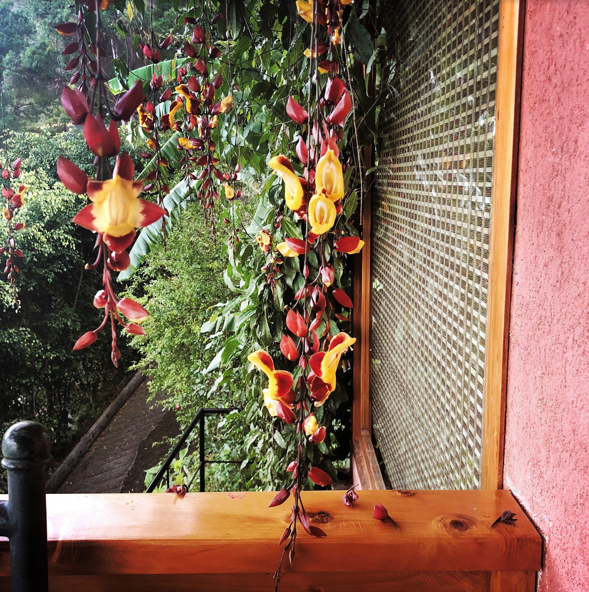 Open Air Places - Villas B'Alam Ya Mirador Villa 52.JPG