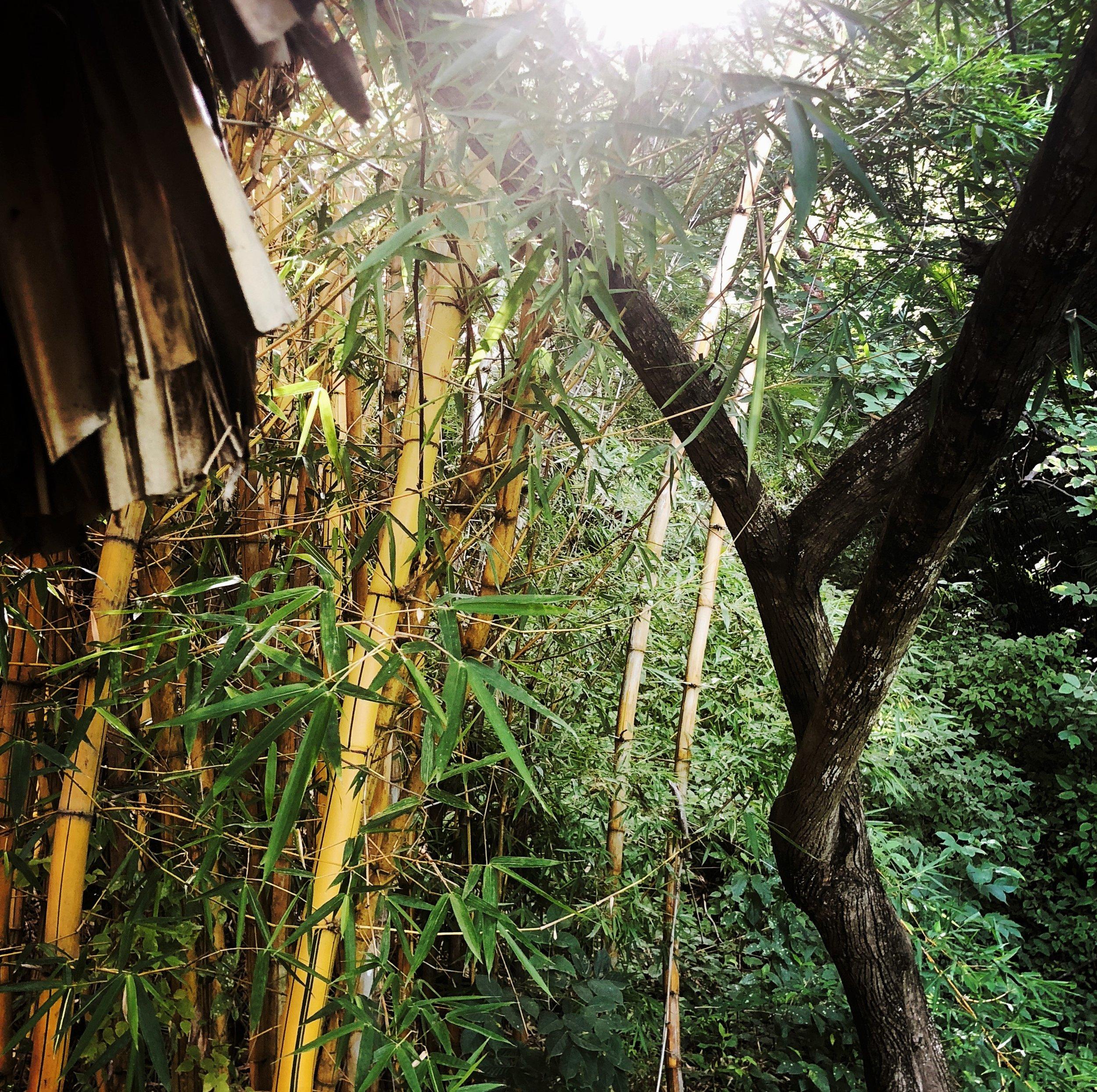 Open Air Places - Villas B'Alam Ya BAMBU Villa 21.JPG