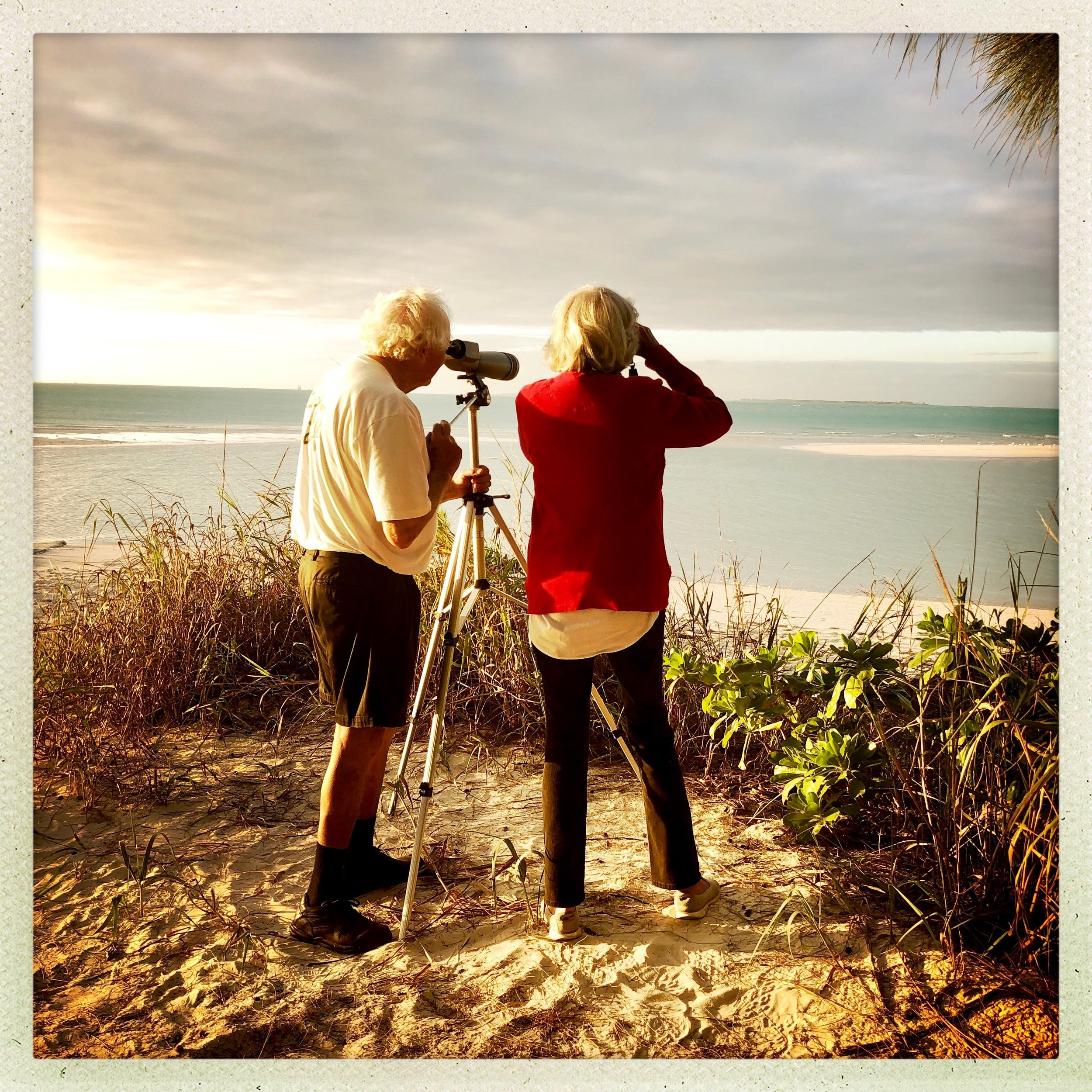 Open Air Places Bird Watching on Treasure Cay Point.jpg