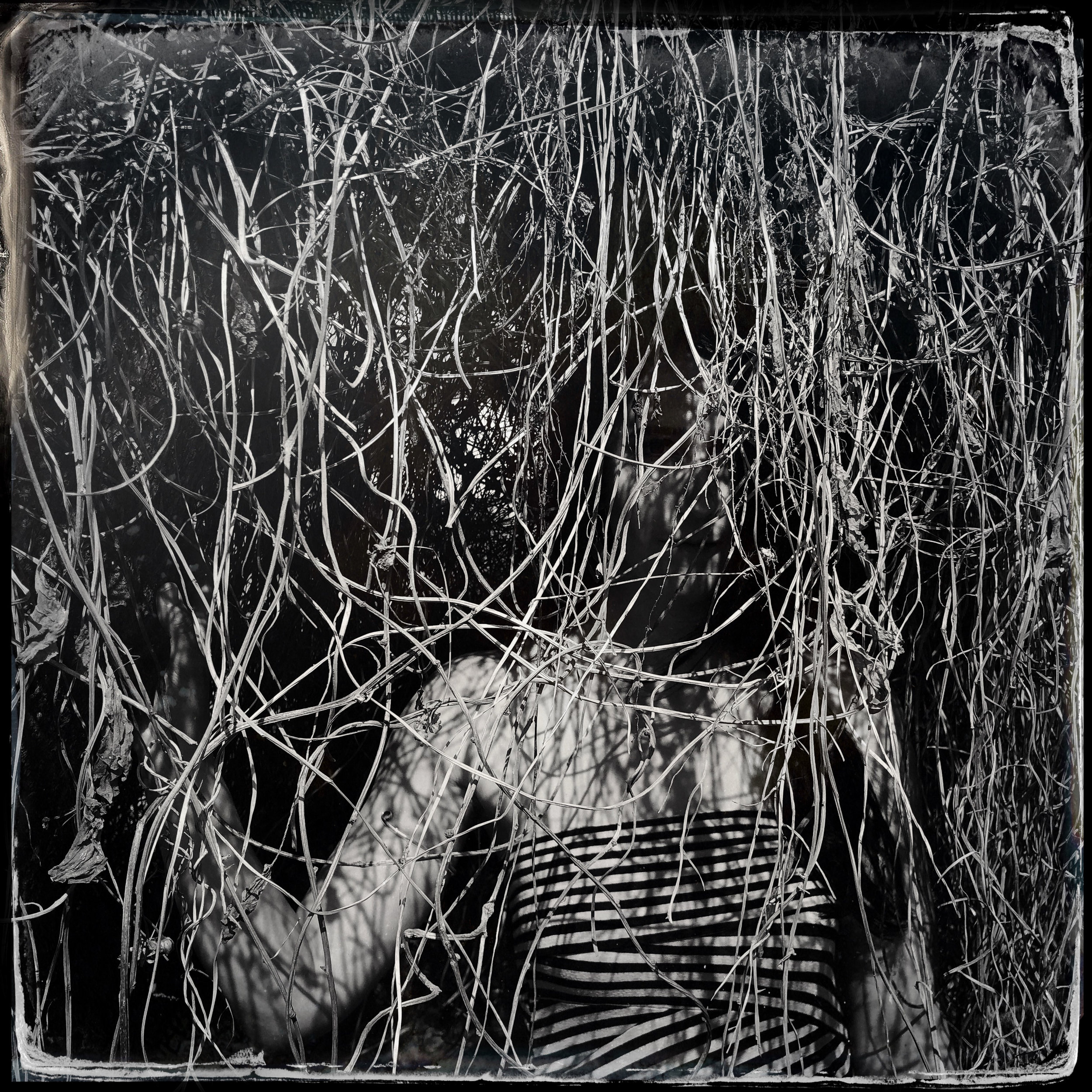 A Bower Is Heard │ Jenna underneath the vine veil at Shaxi, Yunnan, China │Collaboration with Douglas Beasley