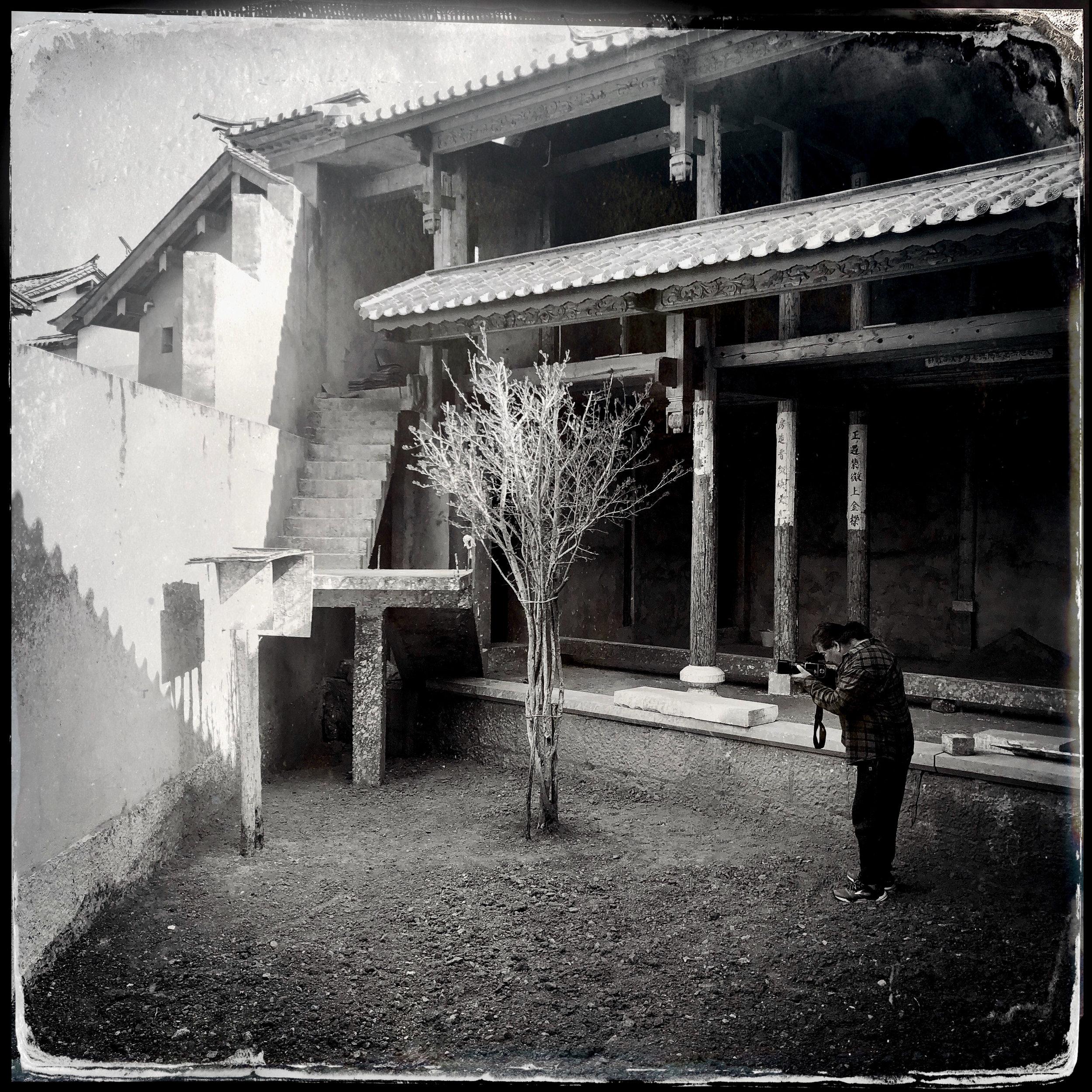 Image Maker and Tree // Shaxi, Yunnan China