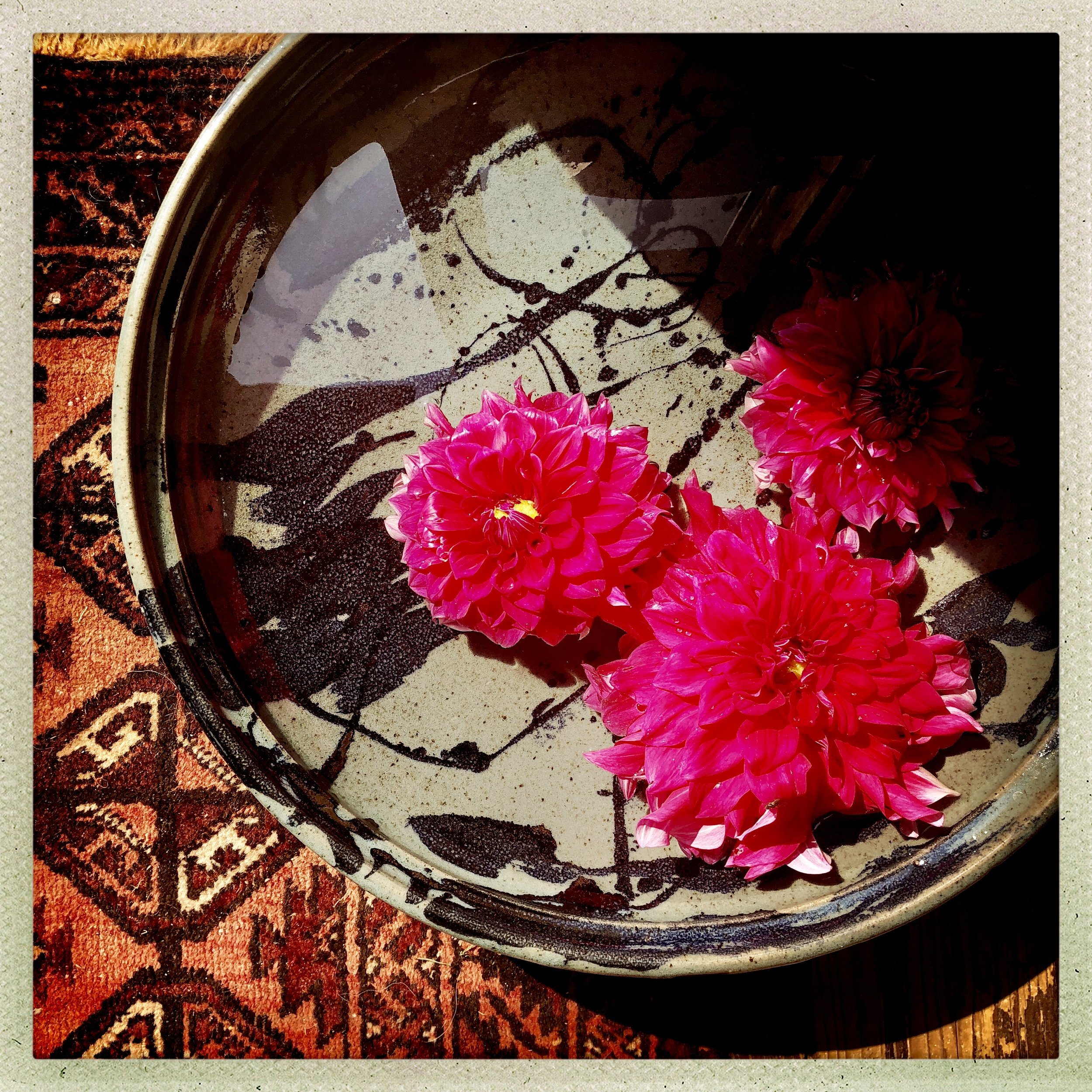 Evan's signature dahlias float in hand-thrown bowls, atop oriental rugs at his Shop