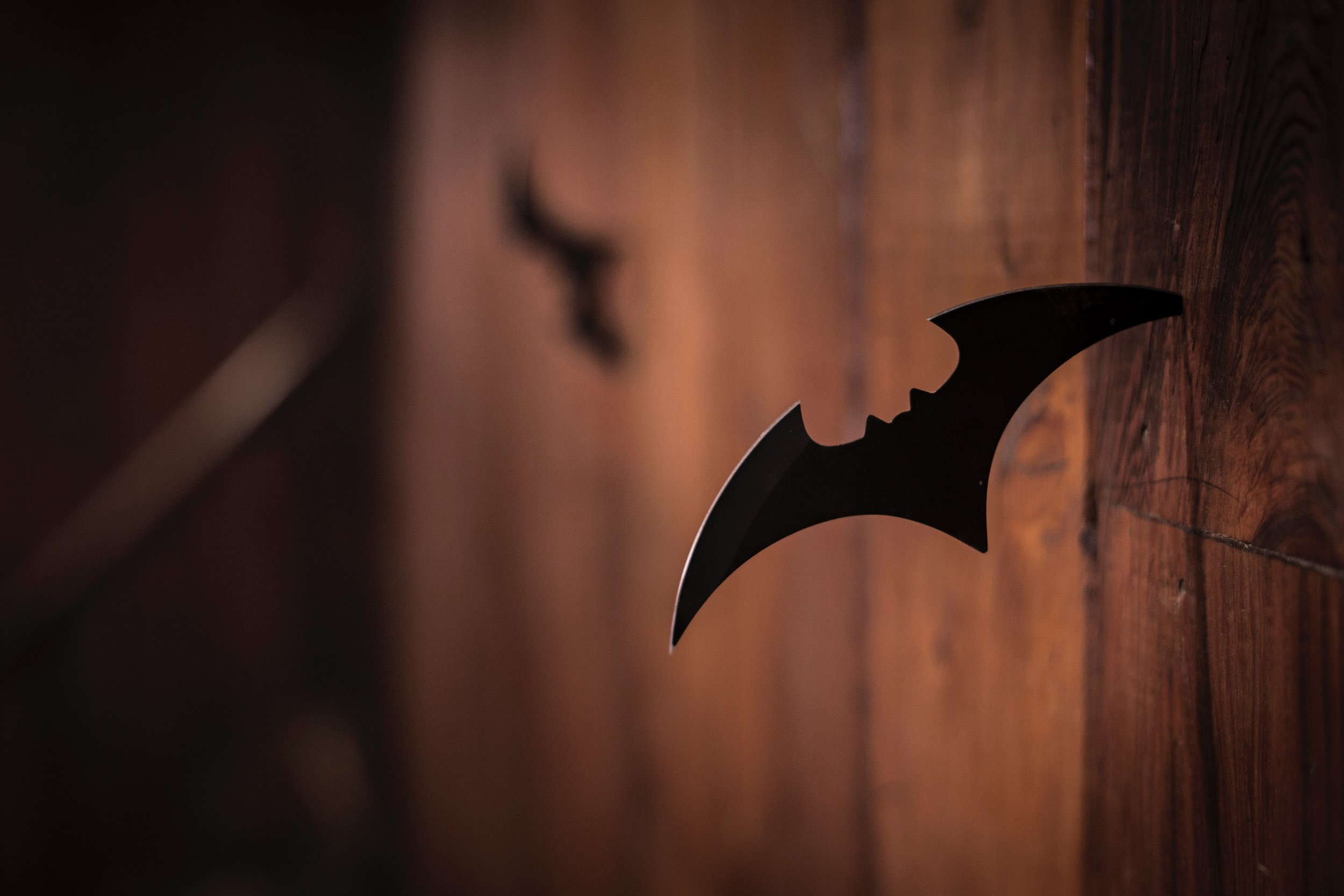 The target? Vampire-inspired technology. The results? Right here.  Photo by  ActionVance  on  Unsplash .