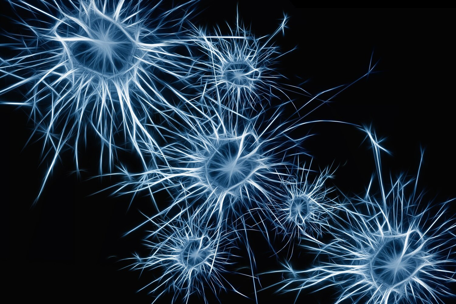 Neurons. Sort of. Image by  Gerd Altmann  from  Pixabay