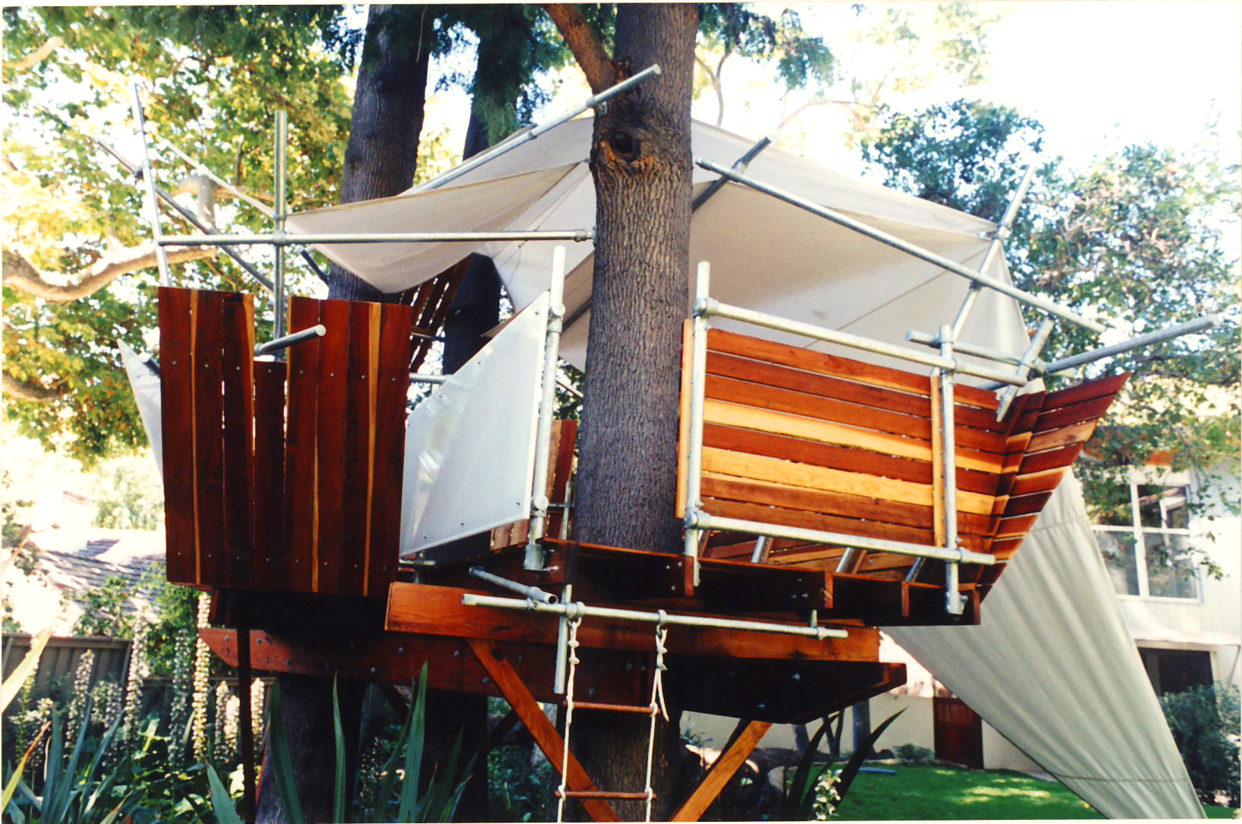 treehouse_21.jpg