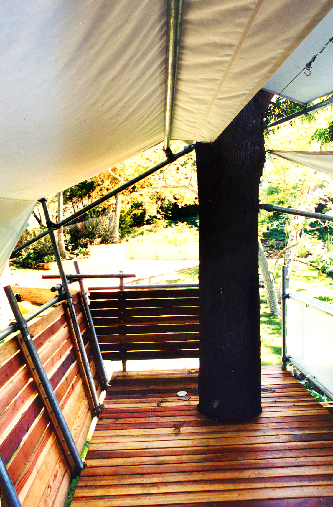 treehouse_9.jpg