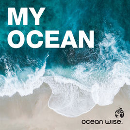 My Ocean Podcast Sustainability Climate Change