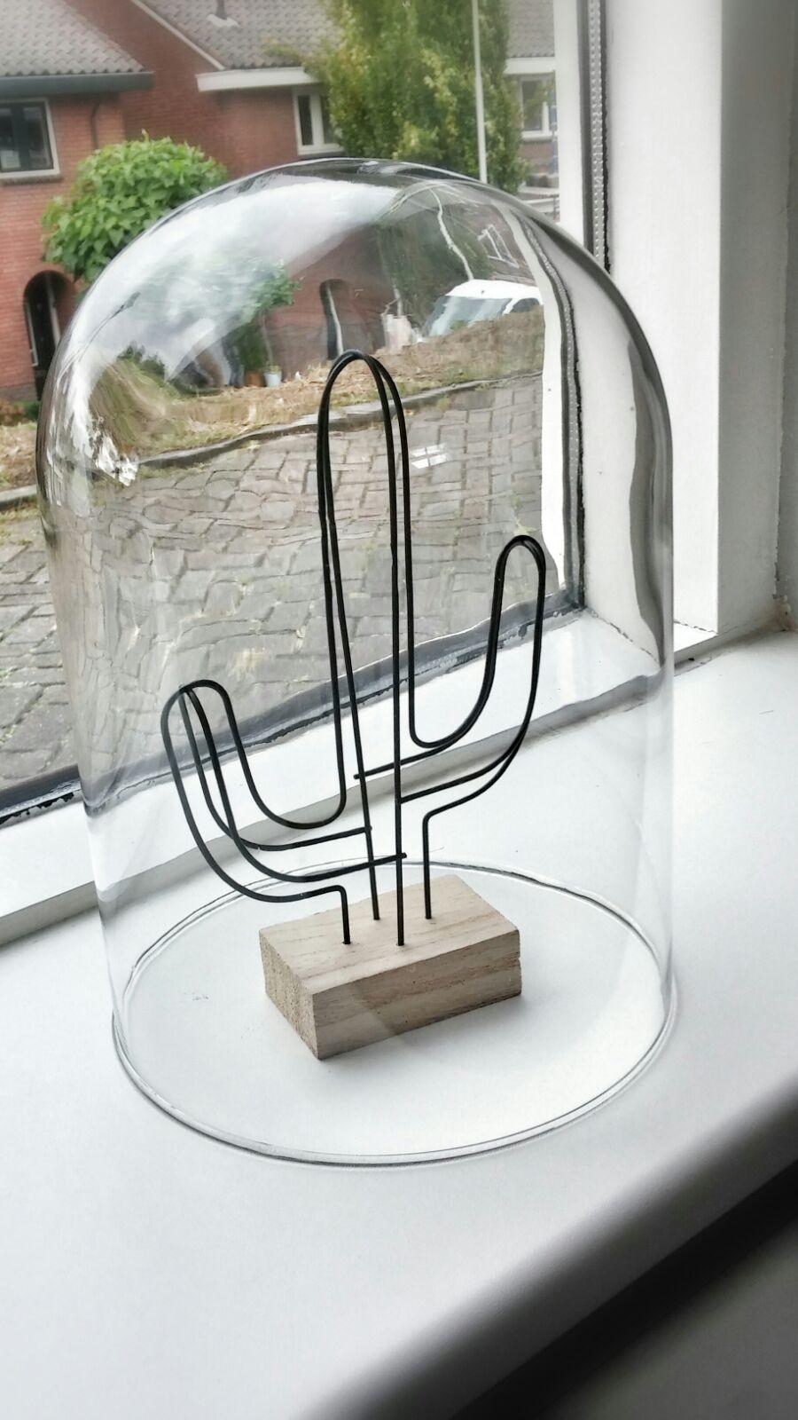woonkamer interieurstyling industrieel stoer cactus stolp glas.jpg