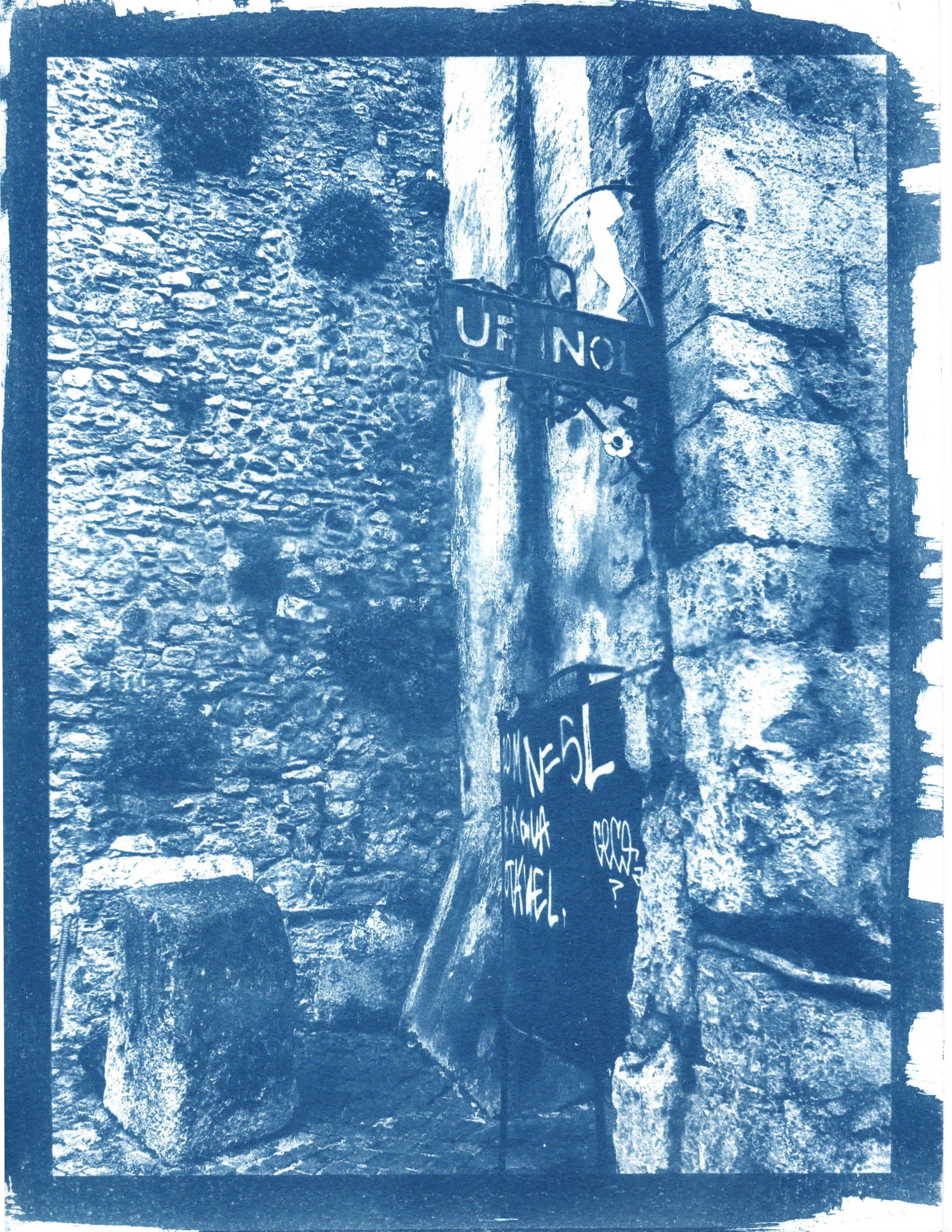 cyanotype11.jpeg