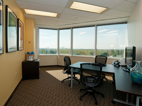 Furnished Suites From $412 - Team suites priced per person/monthCoworking space from $208/monthVirtual office from $102/monthPlease note, price estimates of this office may vary by several factors including your move-in date, size of space you need, and length of rental term (e.g. monthly or 1 year)
