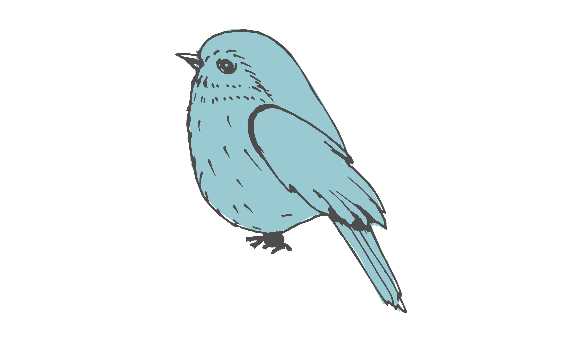 Bird-icon.png