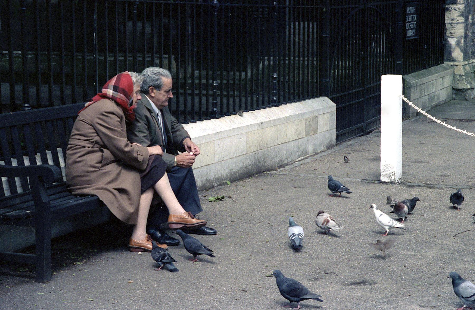 English couple feeding birds