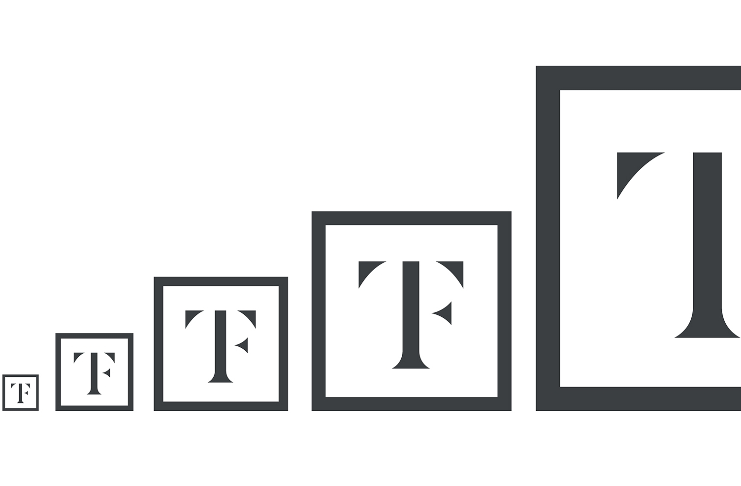 TF_Identity_Branding_V1_A7_w.jpg