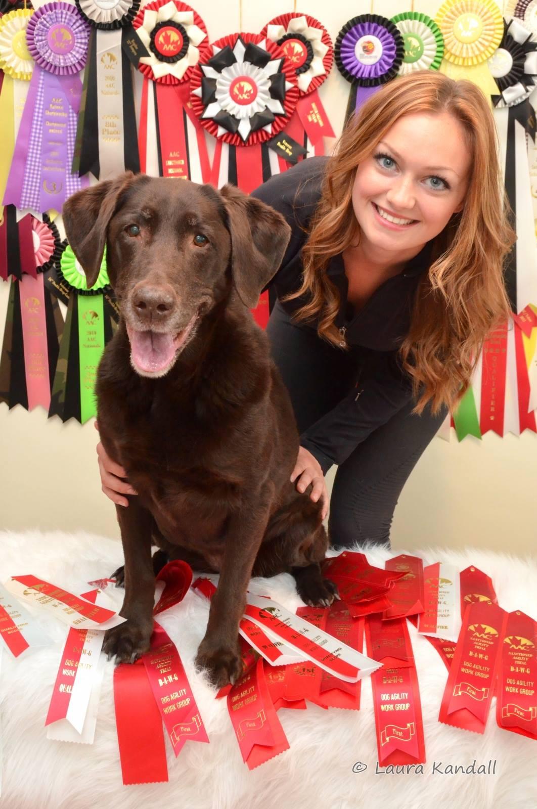 Sugar my first agility dog. 2006, 2007 BC Yukon Regional Champ and 2012 National Champion.