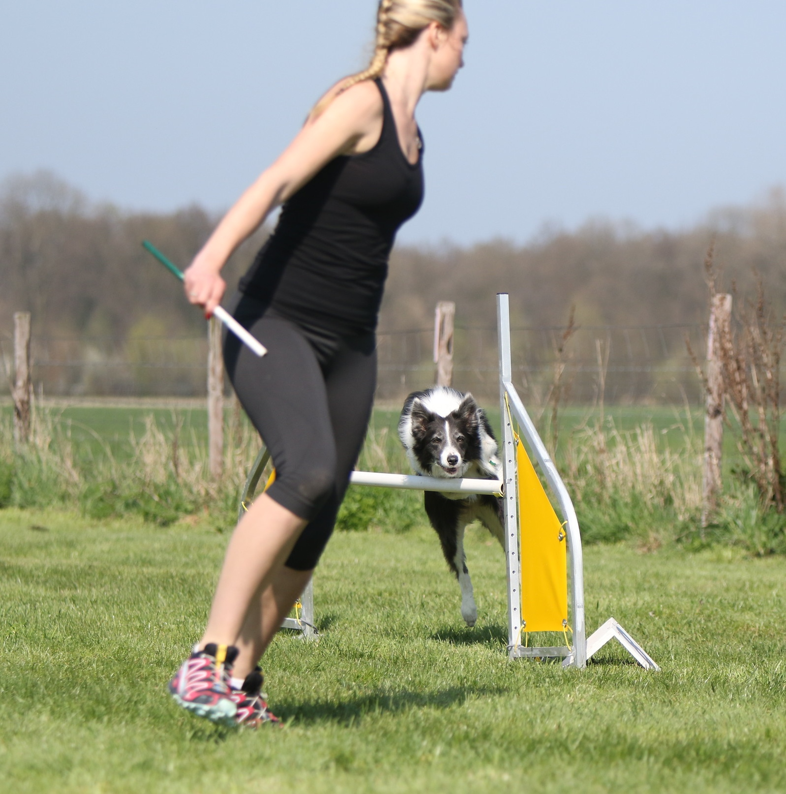 Dog agility Classes  Agility classes are now in Pemberton ! From brand new to agility to competition level classes.   READ MORE