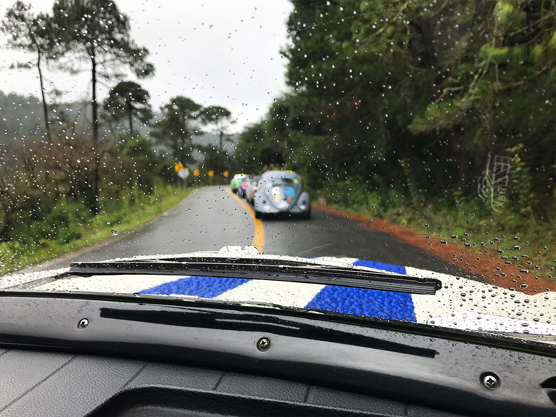 La Carrera Panamericana Stage 9 was too dangerously wet to race.