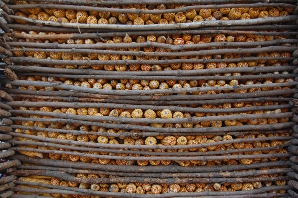 """Stored corn,"" Simatai Great Wall, October, 2009"
