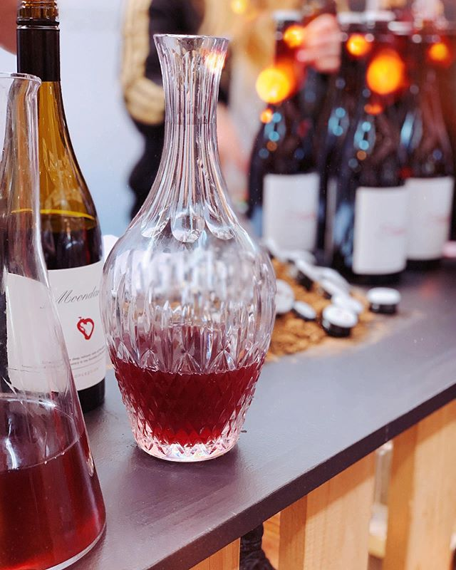 💃 New episode is HERE 💃 Fresh off @pinotpalooza, we get down and dirty with the legendary grape that is Pinot Noir. A super interesting, super delicious and super ~revered~ grape!  What can you find in this episode, we hear you ask? We get into: 🍇 Your 101 on Pinot Noir 😍 Our fave discoveries at @pinotpalooza - including @moondarrawinewagyu, @good_intentions_wine @santolinwines @akitu_wine and @escarpmentvineyard 🤓 How wine events/adventures are helping us to level up our wine geekery 📚 Bookish thoughts on the latest by @therealmargaretatwood and @elainewelteroth ‼️ Plus oh-so-much more  Get it via the link in our bio nowww ⚡️