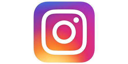 Instagram - Program Gallery Logo.jpg