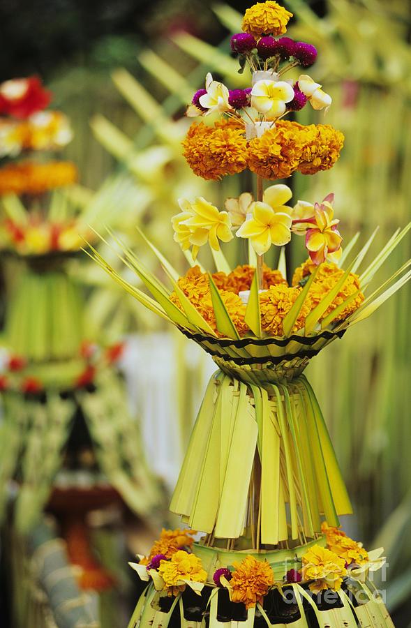 Balinese.jpg