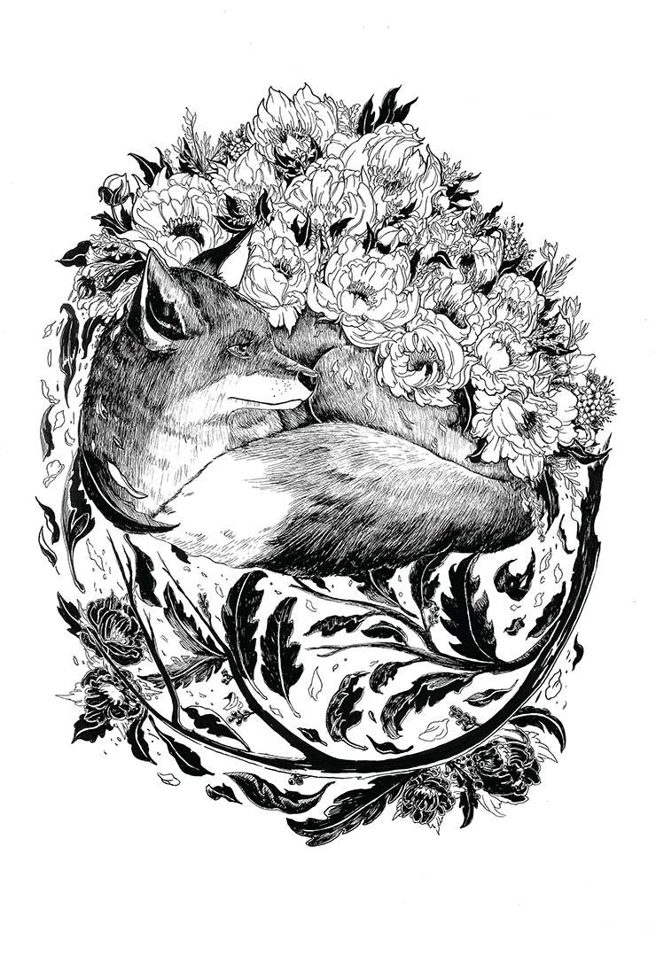 Floral x Animal Series