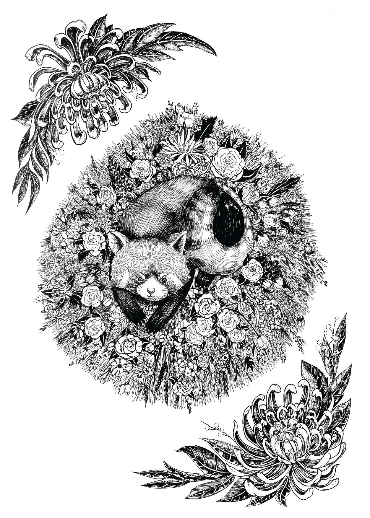 4 - red-panda.jpg