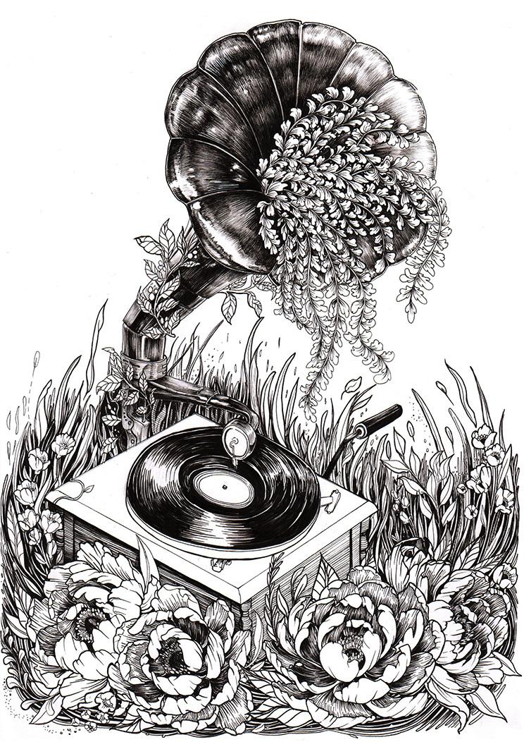 Gramaphone x Peonies Illustration