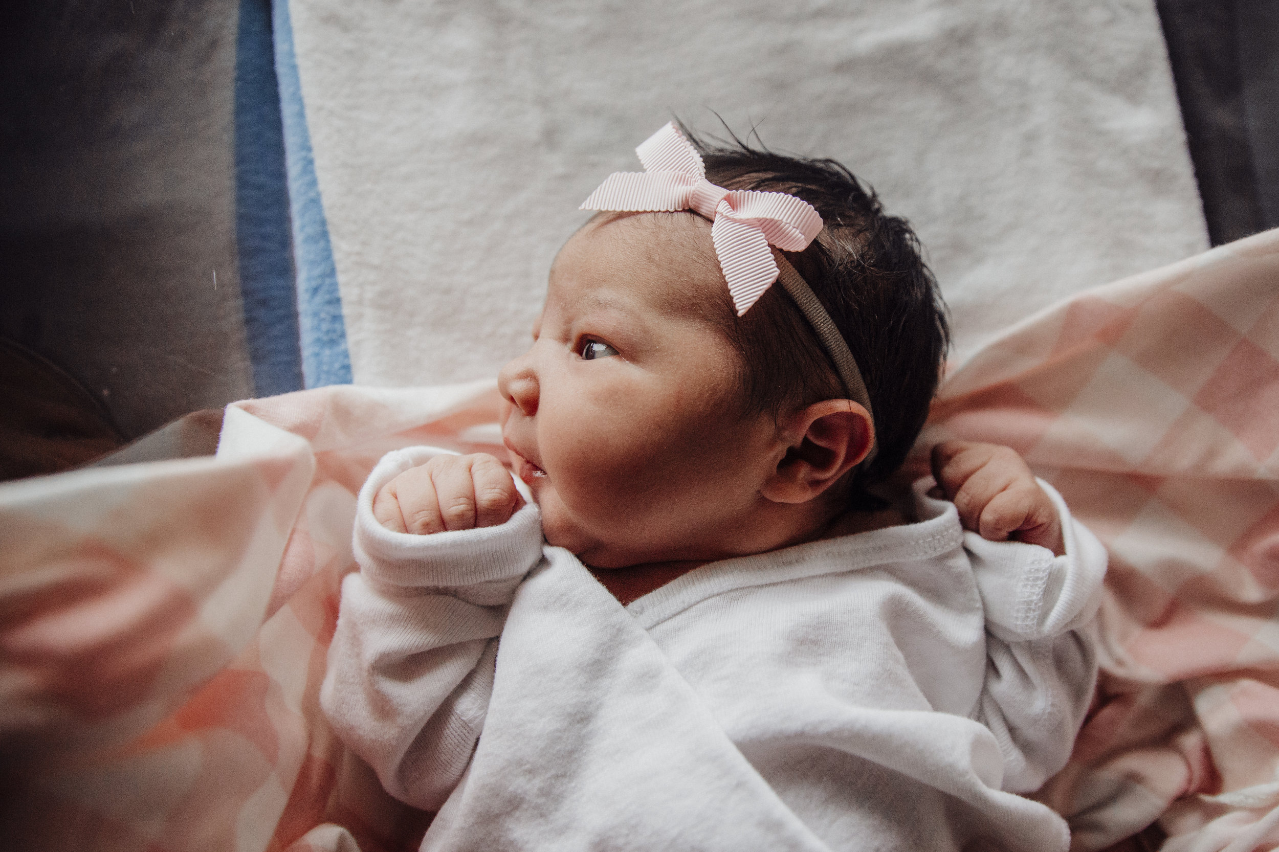allie wilson photography nj new jersey newborn lifestyle fresh 48 photographer