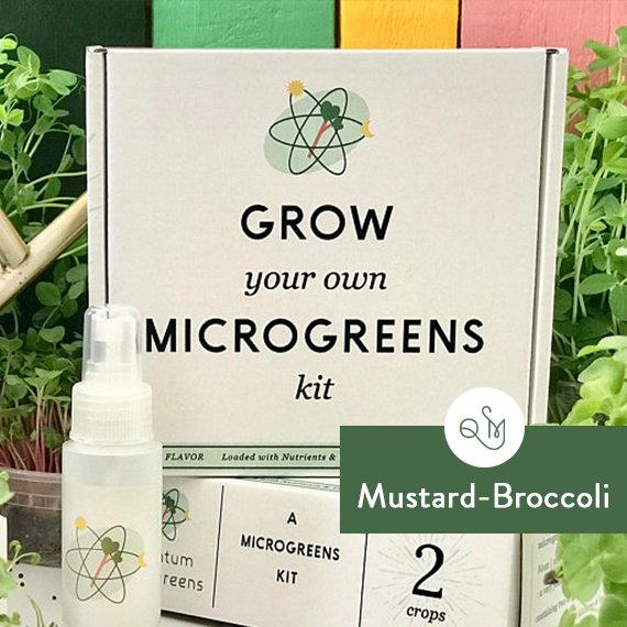 Grow_Your_Own_Kit_Mustard_Radish_Quantum_Microgreens.jpg