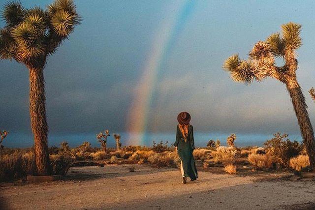 Rainbows have arrived at @thehidesert #joshuatree  Photo: @somethingrad