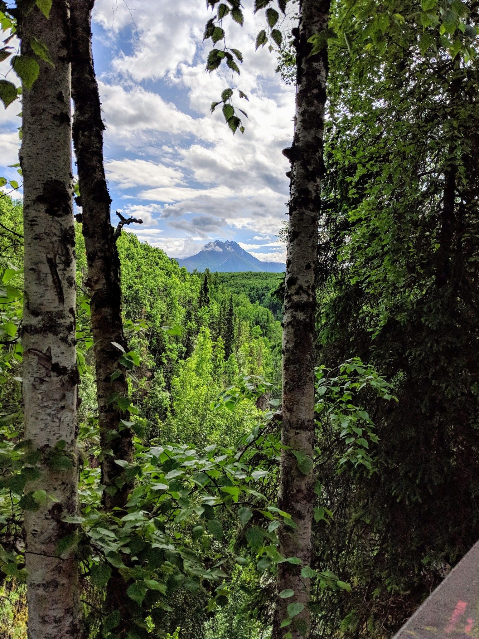 Thunderbird Falls Trail - Check Out Trail Details by clicking here