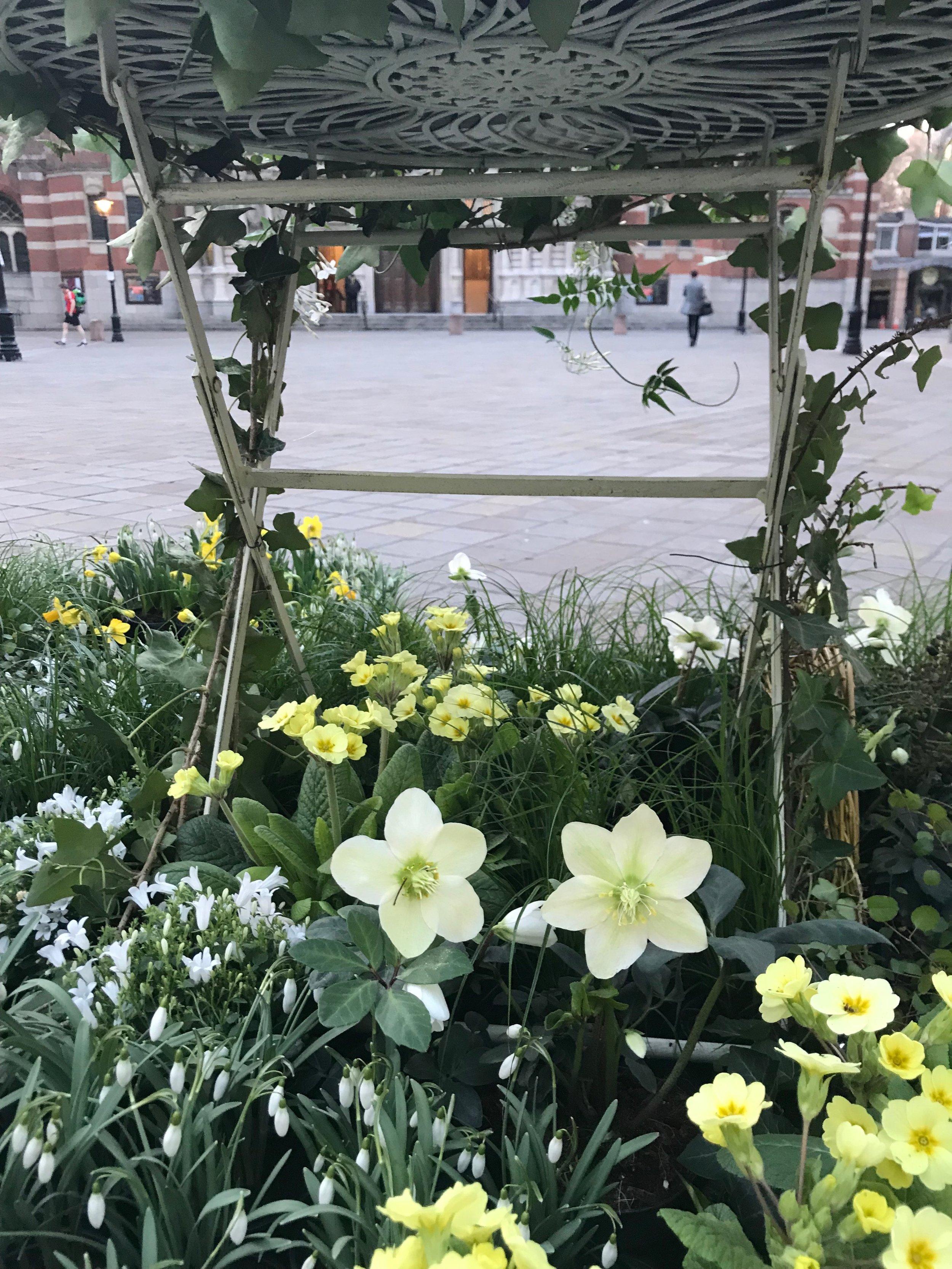 RHS Early Spring Fair 2018 - Gillian Goodson Designs
