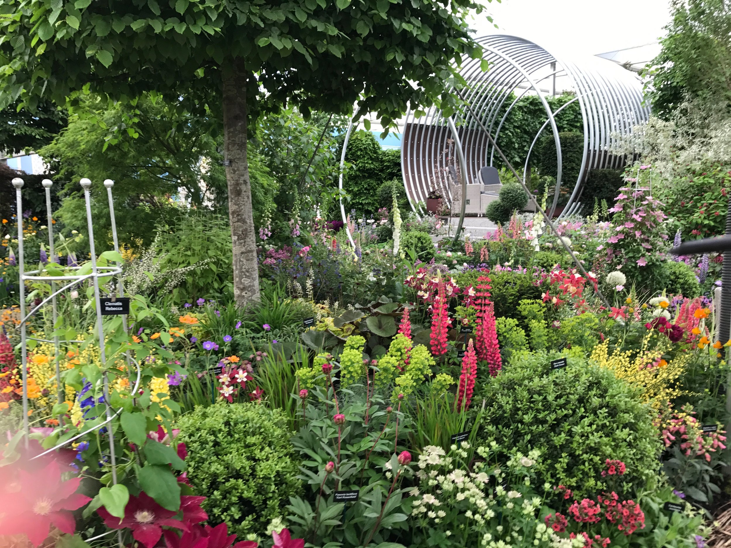 Royal Horticultural Society (RHS) Chelsea Flower Show - Gillian Goodson Designs