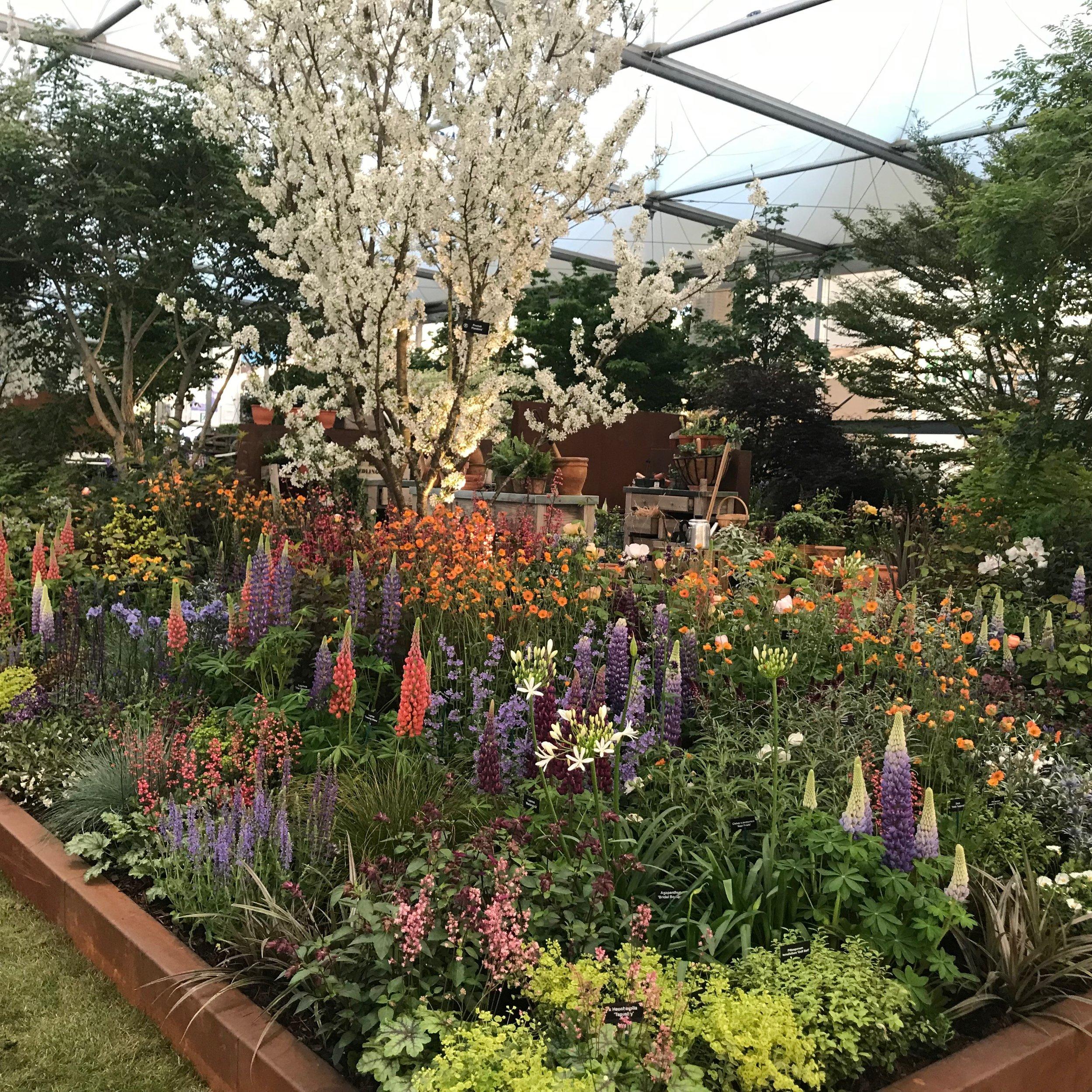 Hillier Garden Chelsea 2018 Gillian Goodson Designs_3.JPG
