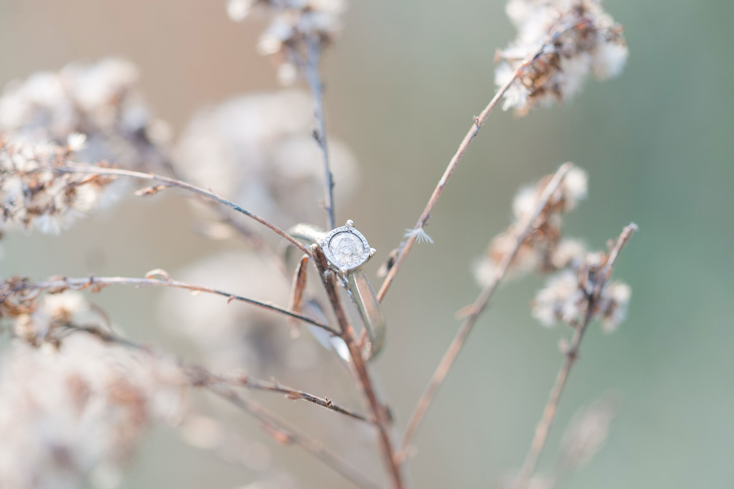 Holly_L_Robbins_Photography_Covington_Ga_Wedding_Photographers-7.jpg