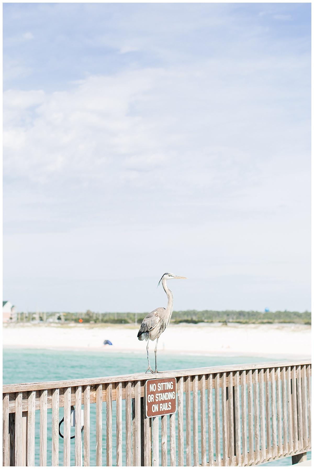 orange_beach_alabama_wedding_photographers_0069.jpg