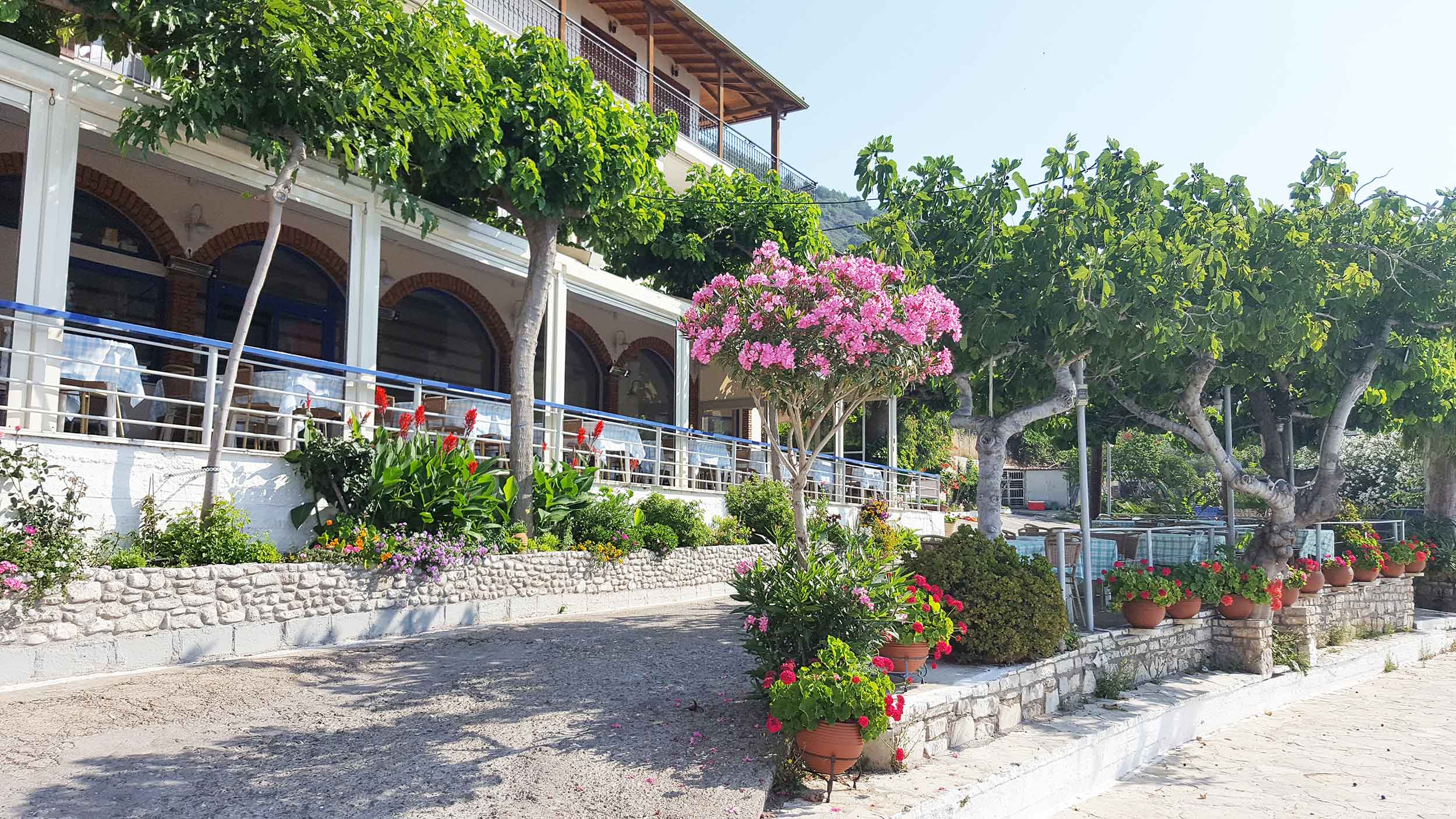 Monistiraki town and flowers.jpg