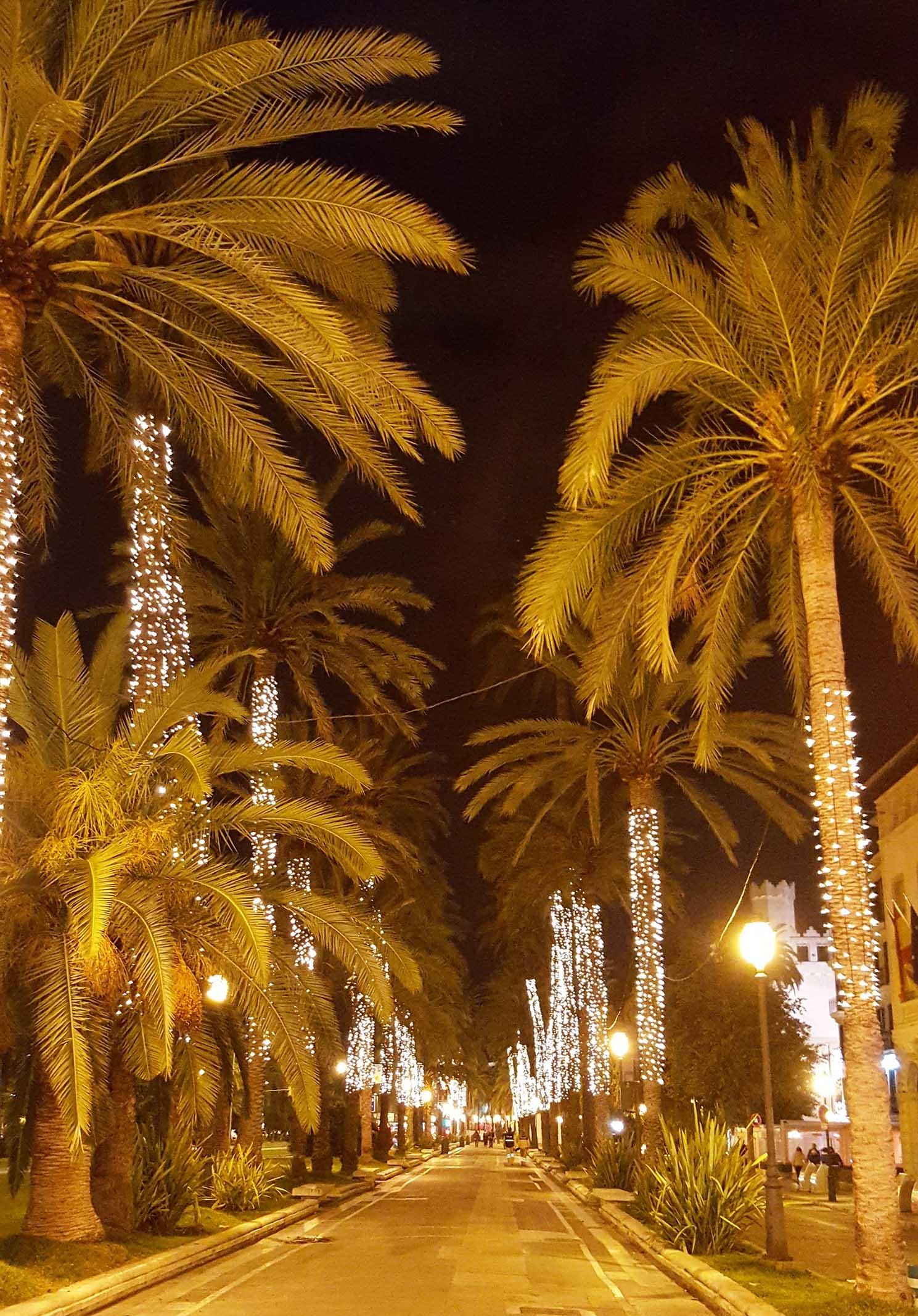Mallorca Palma Christmas avenue