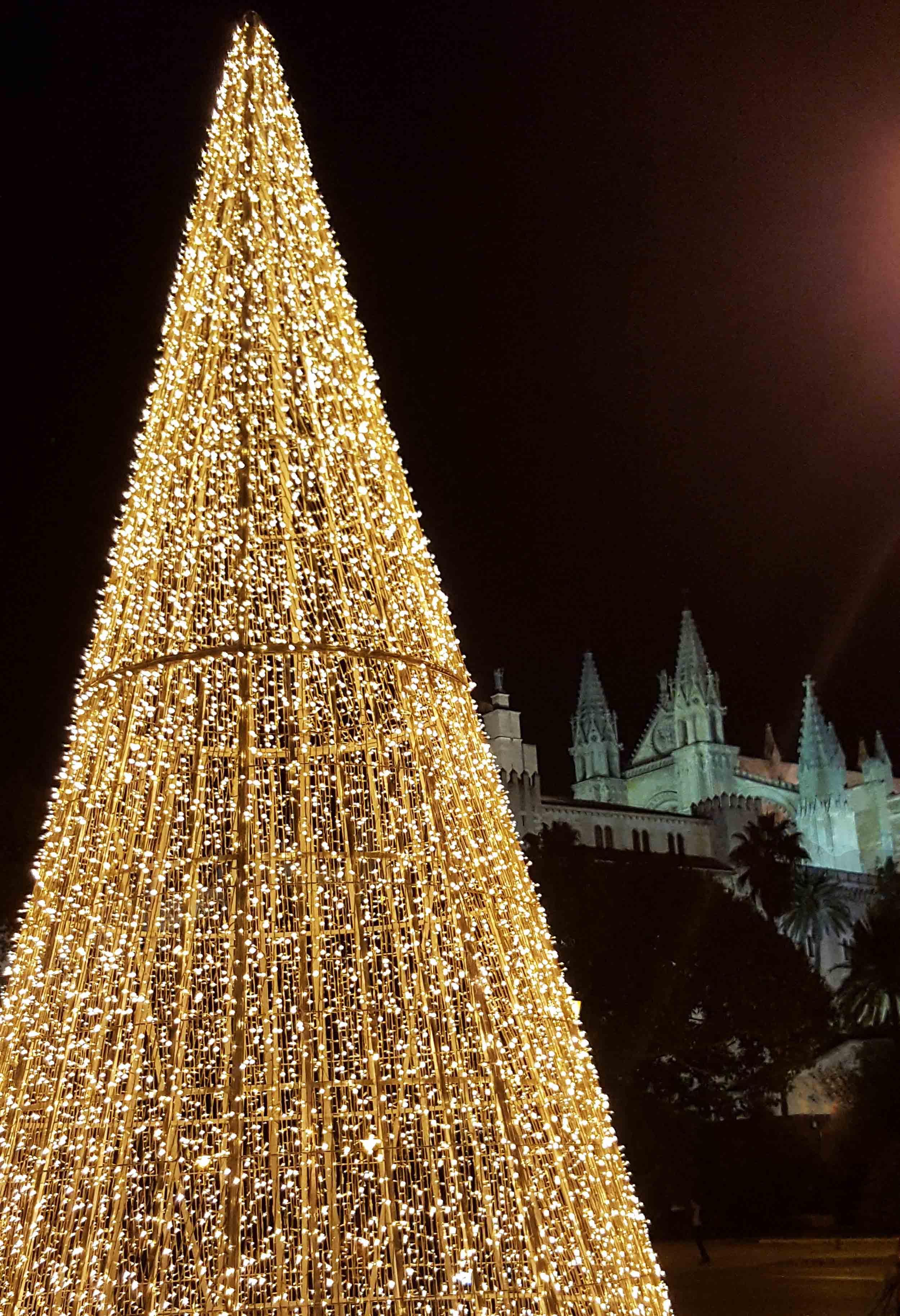 Mallorca Palma Christmas tree and Cathedral.jpg