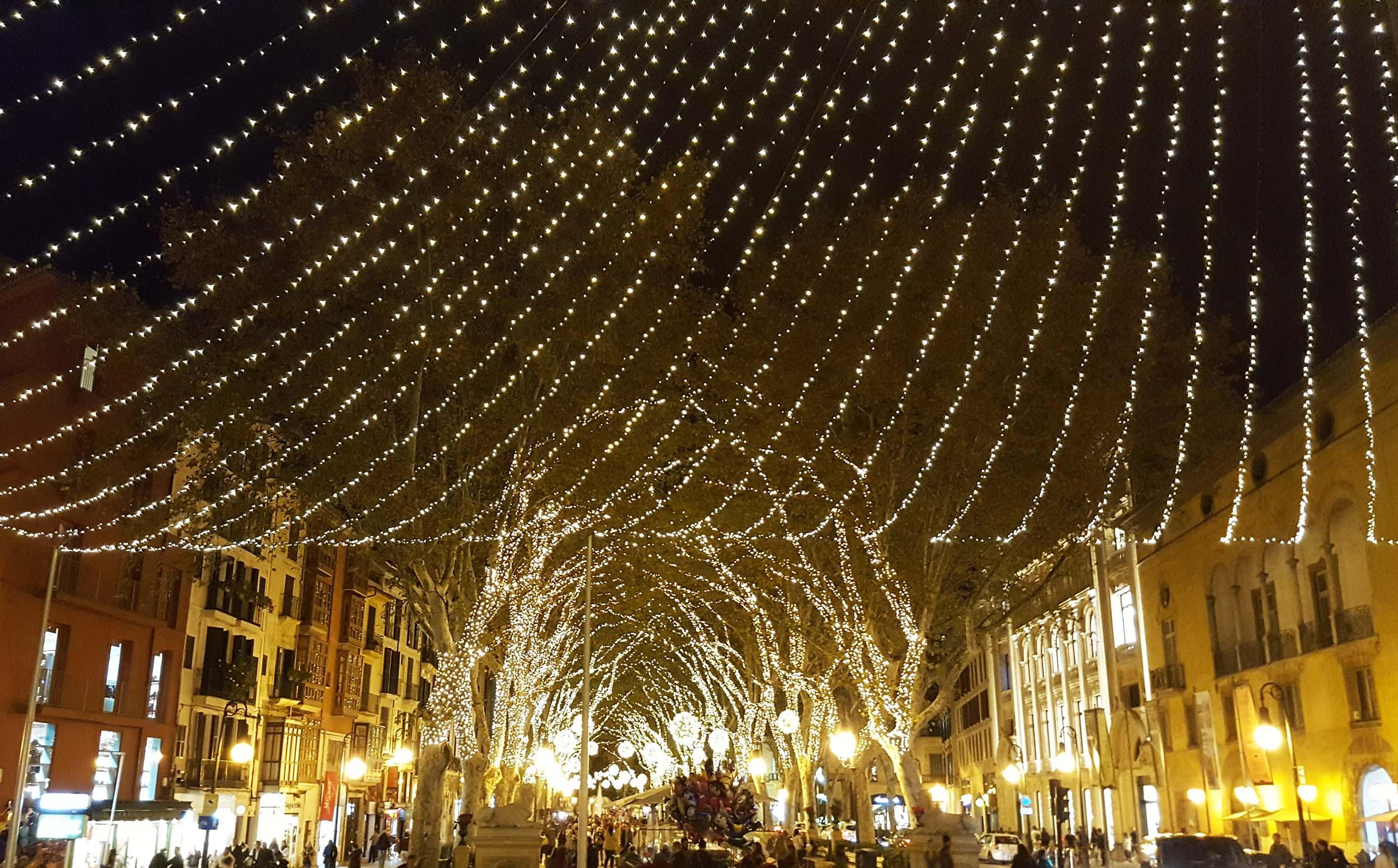 Palma Christmas 3.jpg