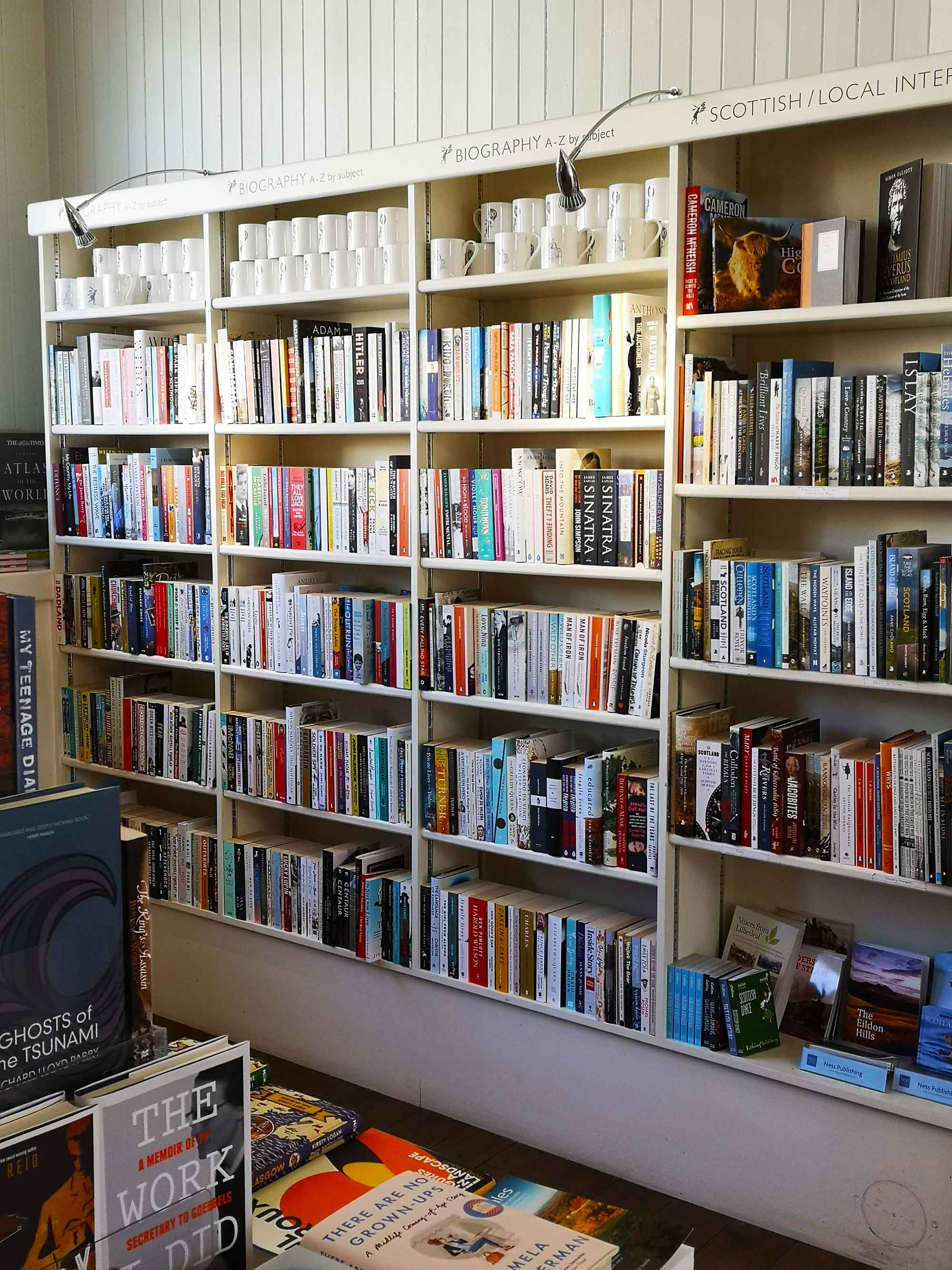 Mainstreet bookshelves.jpg