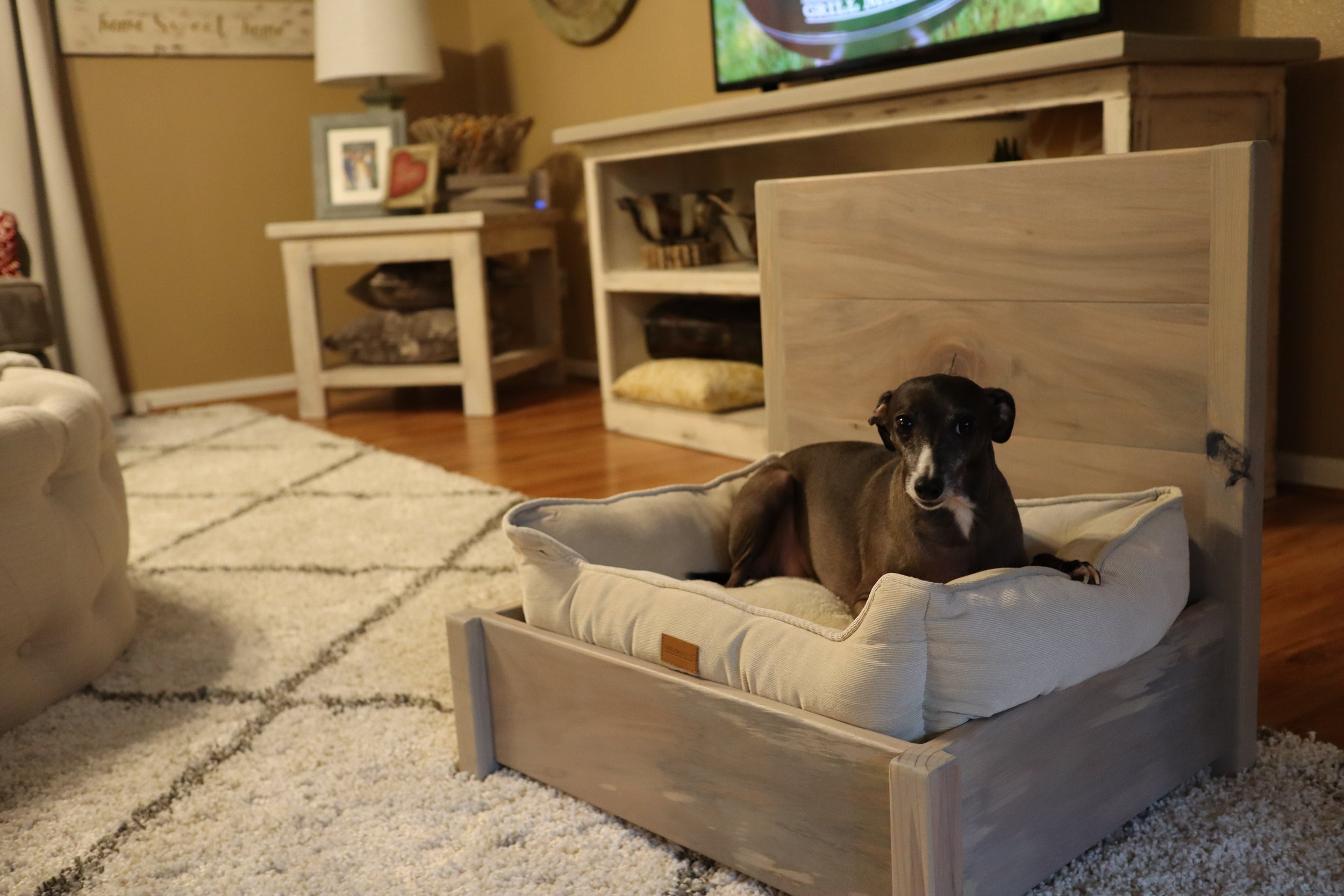 building a dog bed.JPG