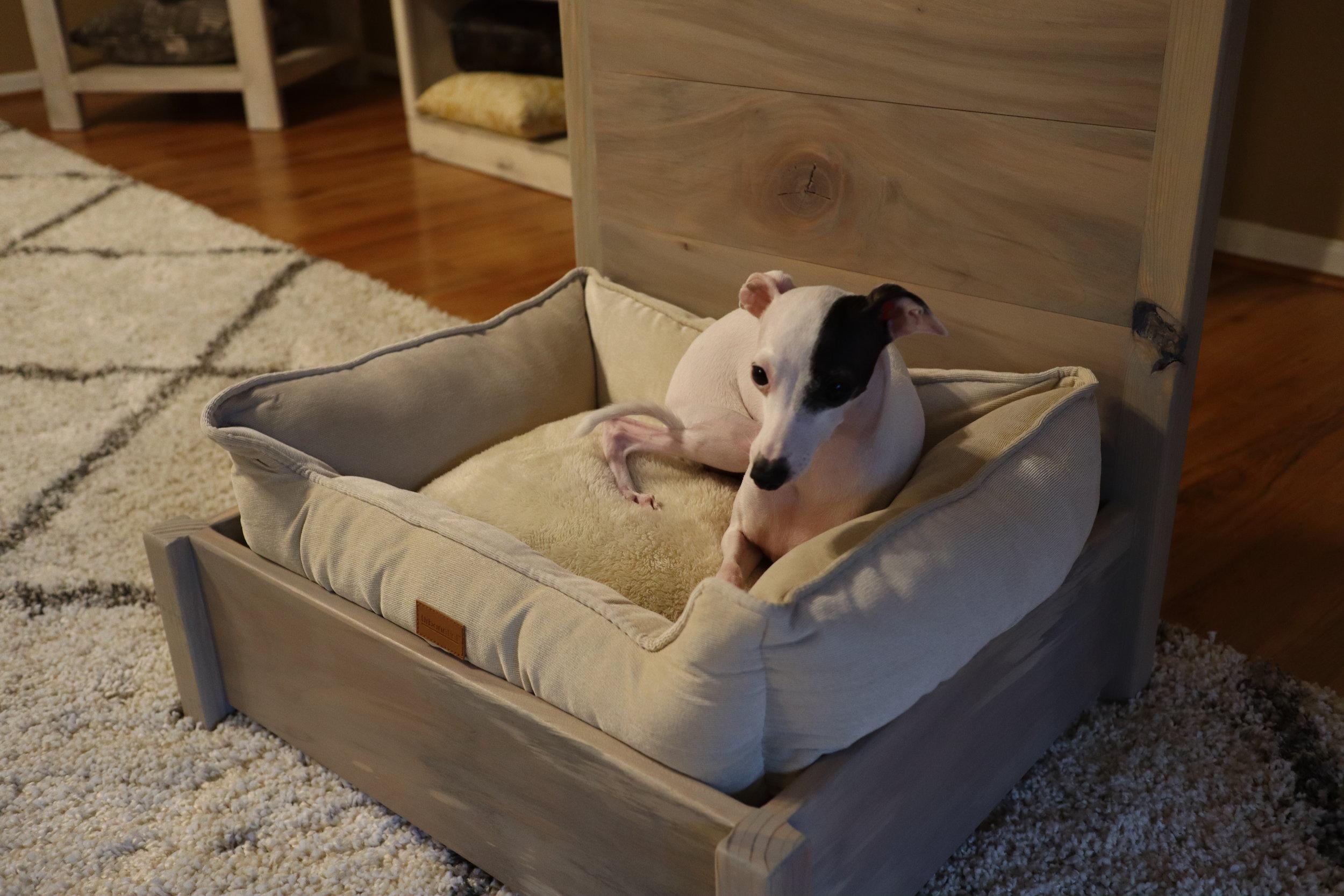italian greyhound dog bed.JPG