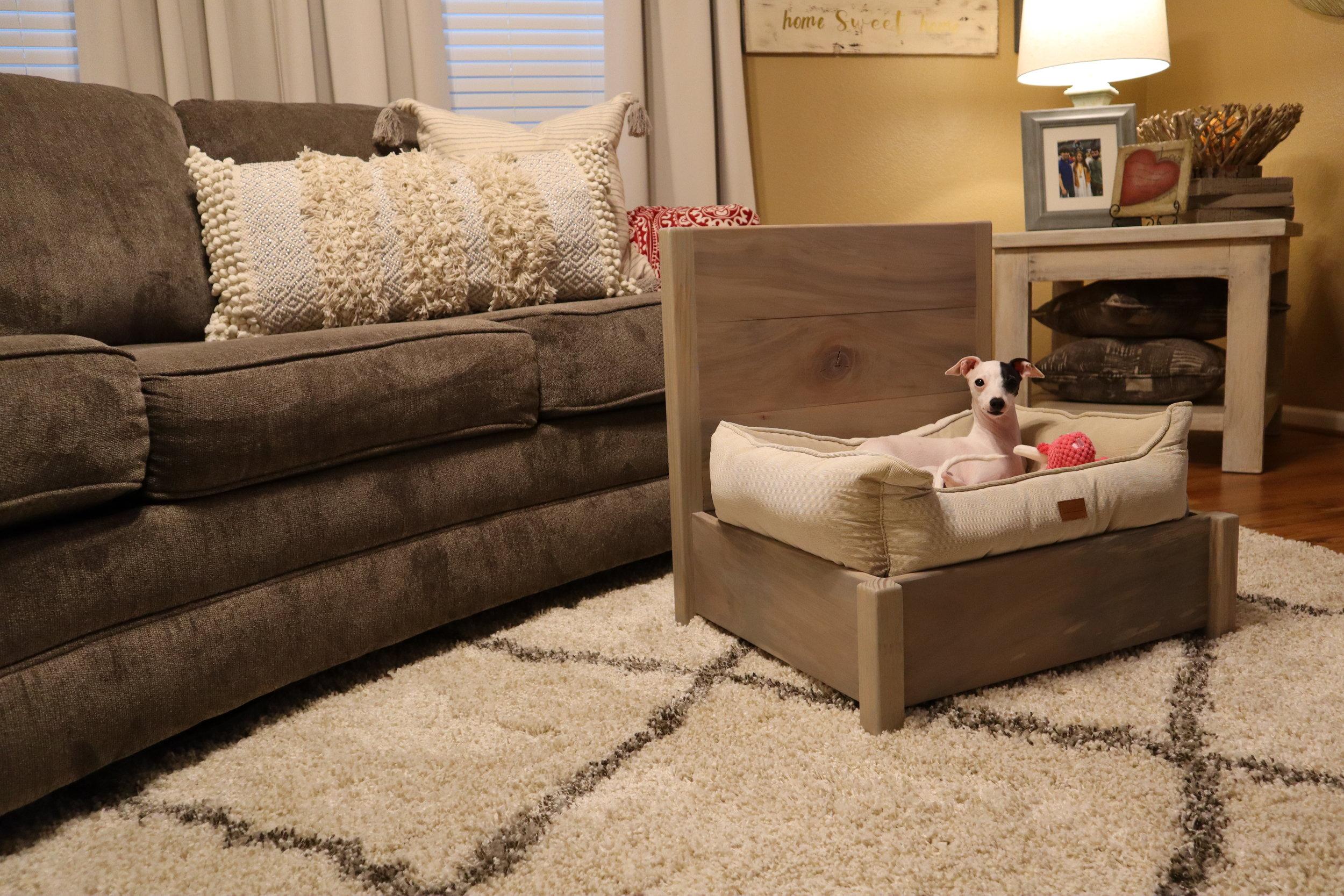bed for italian greyhound.JPG