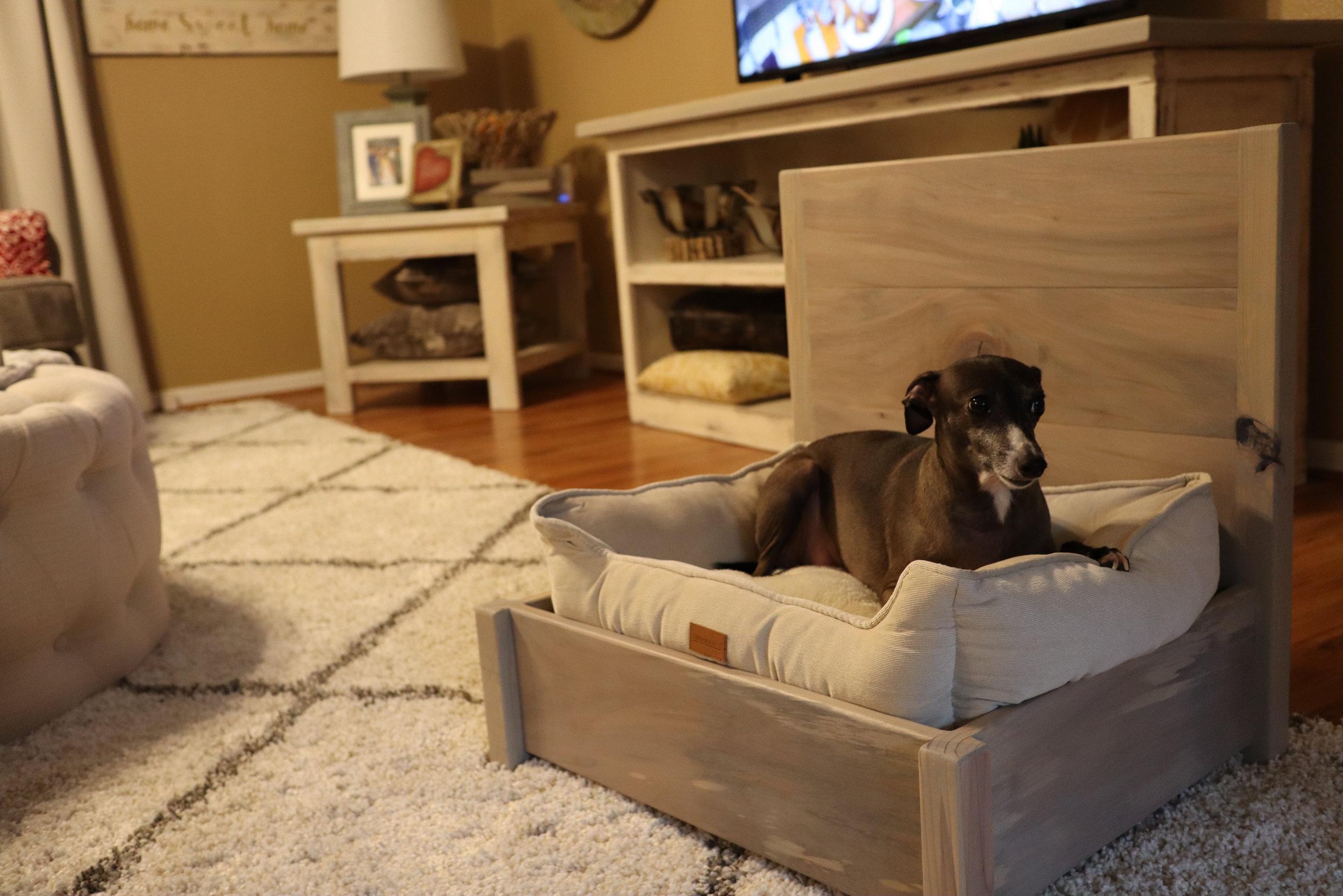 doggy bed.JPG