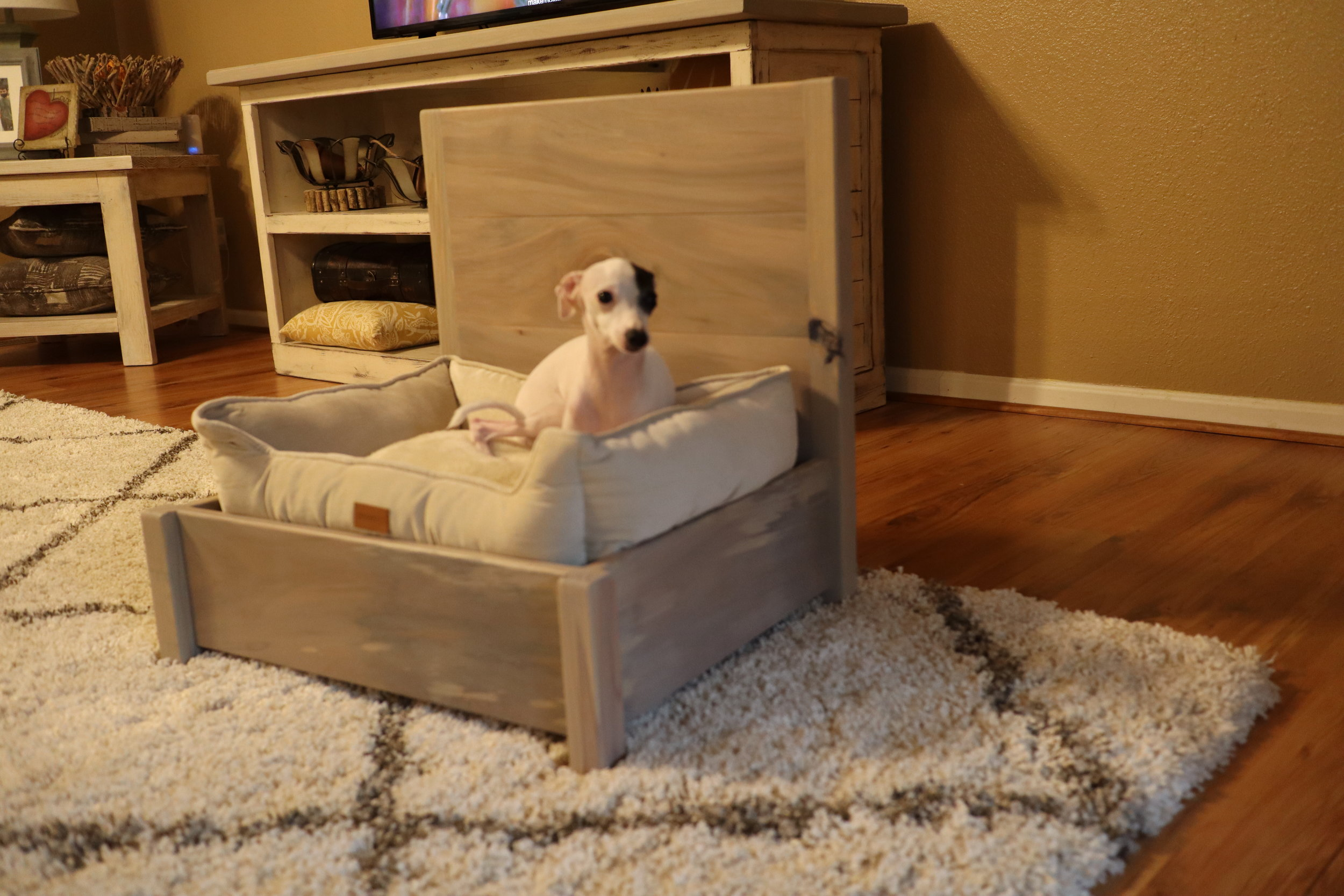 build a dog bed.JPG